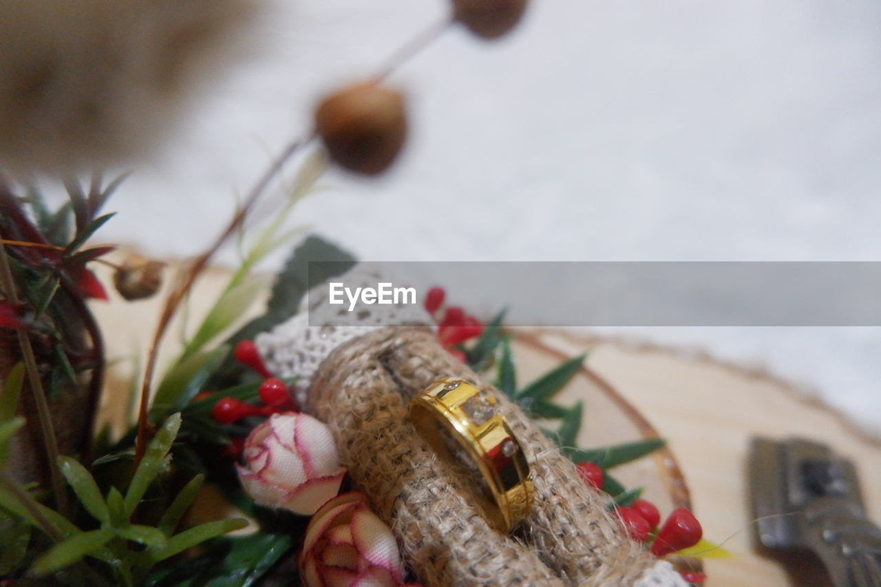 selective focus, close-up, plant, nature, art and craft, creativity, no people, celebration, focus on foreground, day, still life, decoration, flower, flowering plant, representation, plant part, outdoors, celebration event