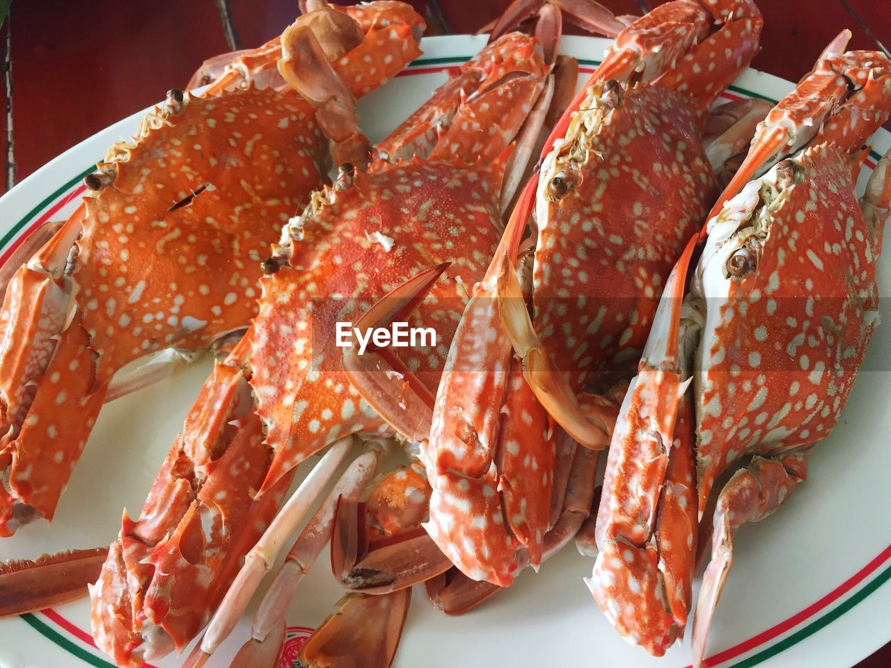 High Angle View Of Crabs In Plate