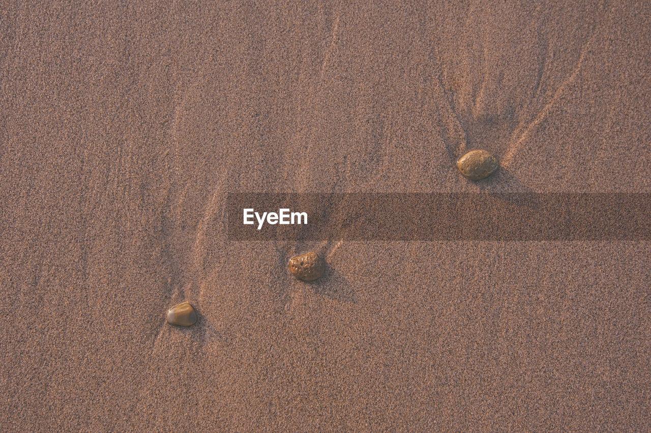 HIGH ANGLE VIEW OF SAND DUNE ON BEACH