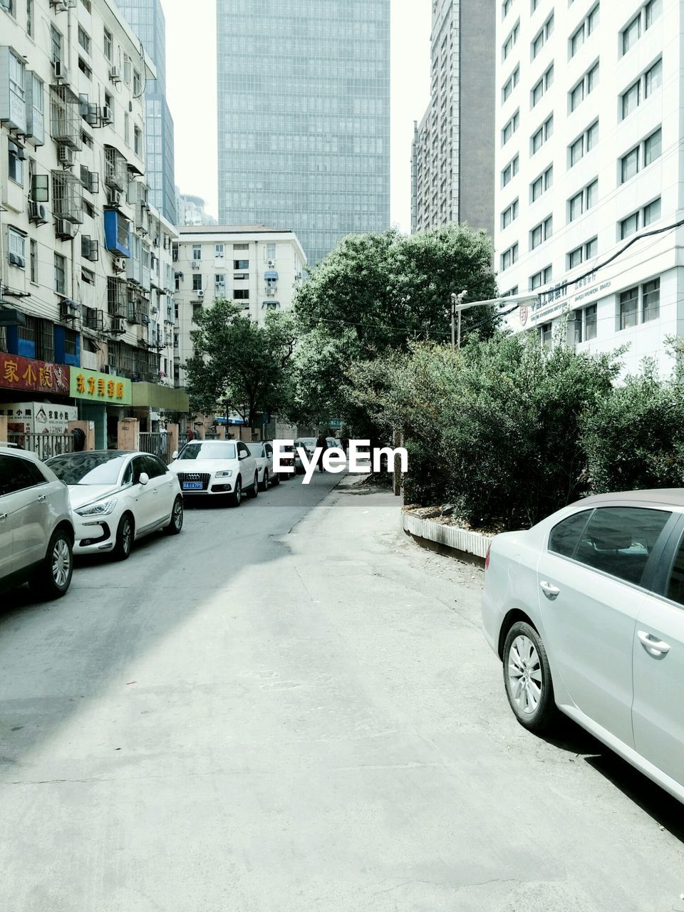 car, architecture, city, tree, transportation, land vehicle, building exterior, built structure, street, mode of transport, day, city life, road, outdoors, skyscraper, no people, sky