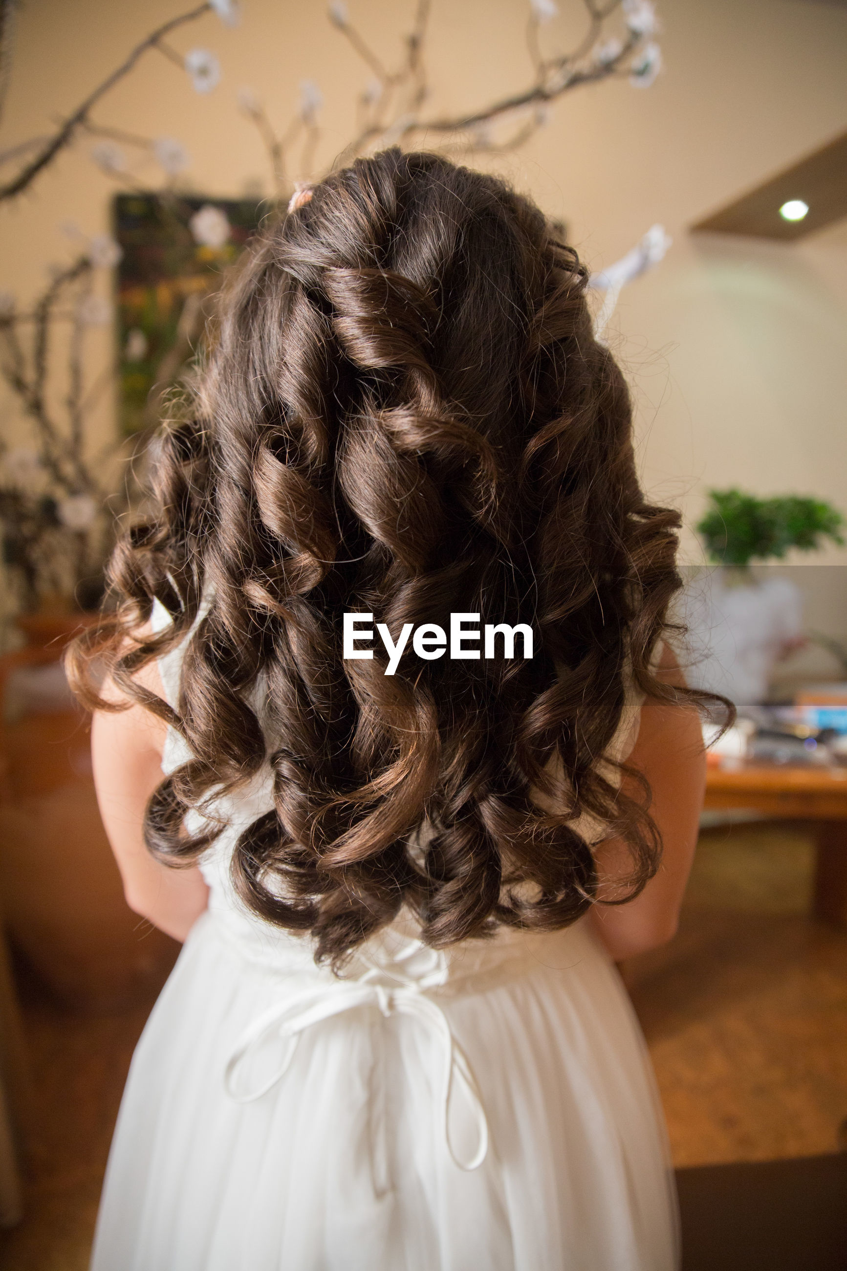 Rear view of bride with long hair