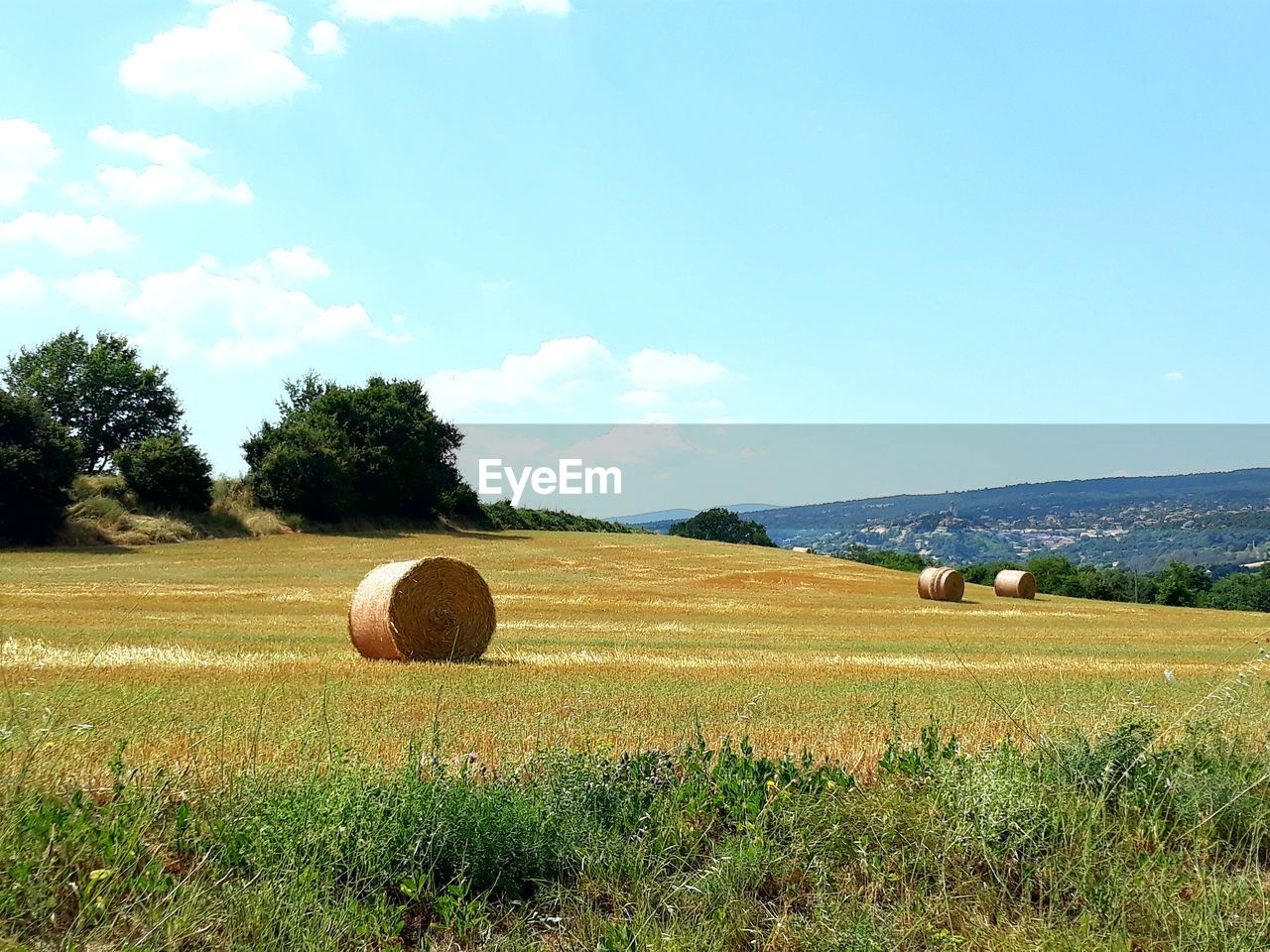 sky, field, plant, landscape, environment, land, bale, tree, hay, agriculture, tranquil scene, scenics - nature, nature, tranquility, beauty in nature, farm, rural scene, grass, day, cloud - sky, no people, outdoors