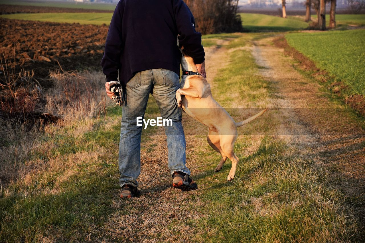 Low section of man with dog on field
