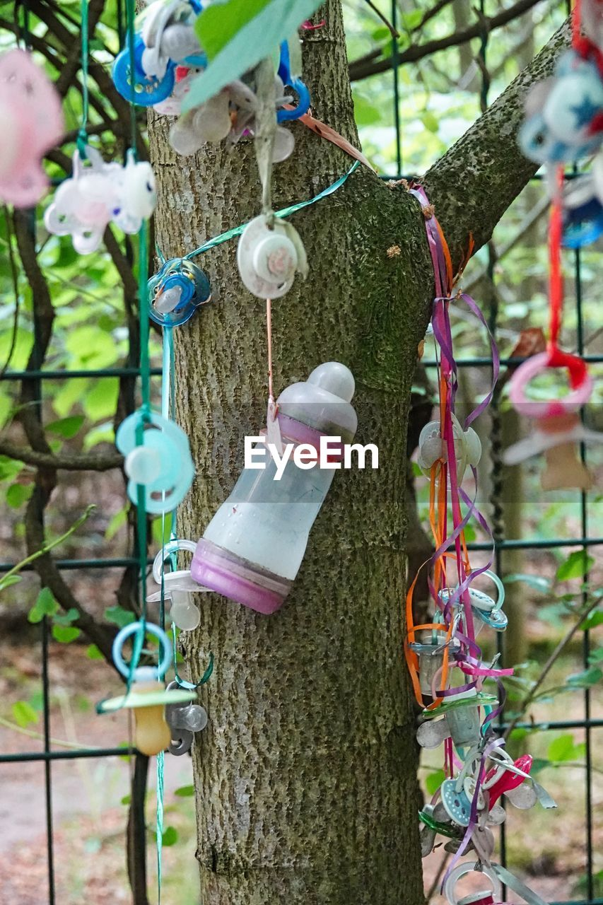 plant, tree, tree trunk, trunk, hanging, day, nature, focus on foreground, close-up, growth, outdoors, pink color, no people, selective focus, branch, green color, beauty in nature, decoration, front or back yard, bird feeder