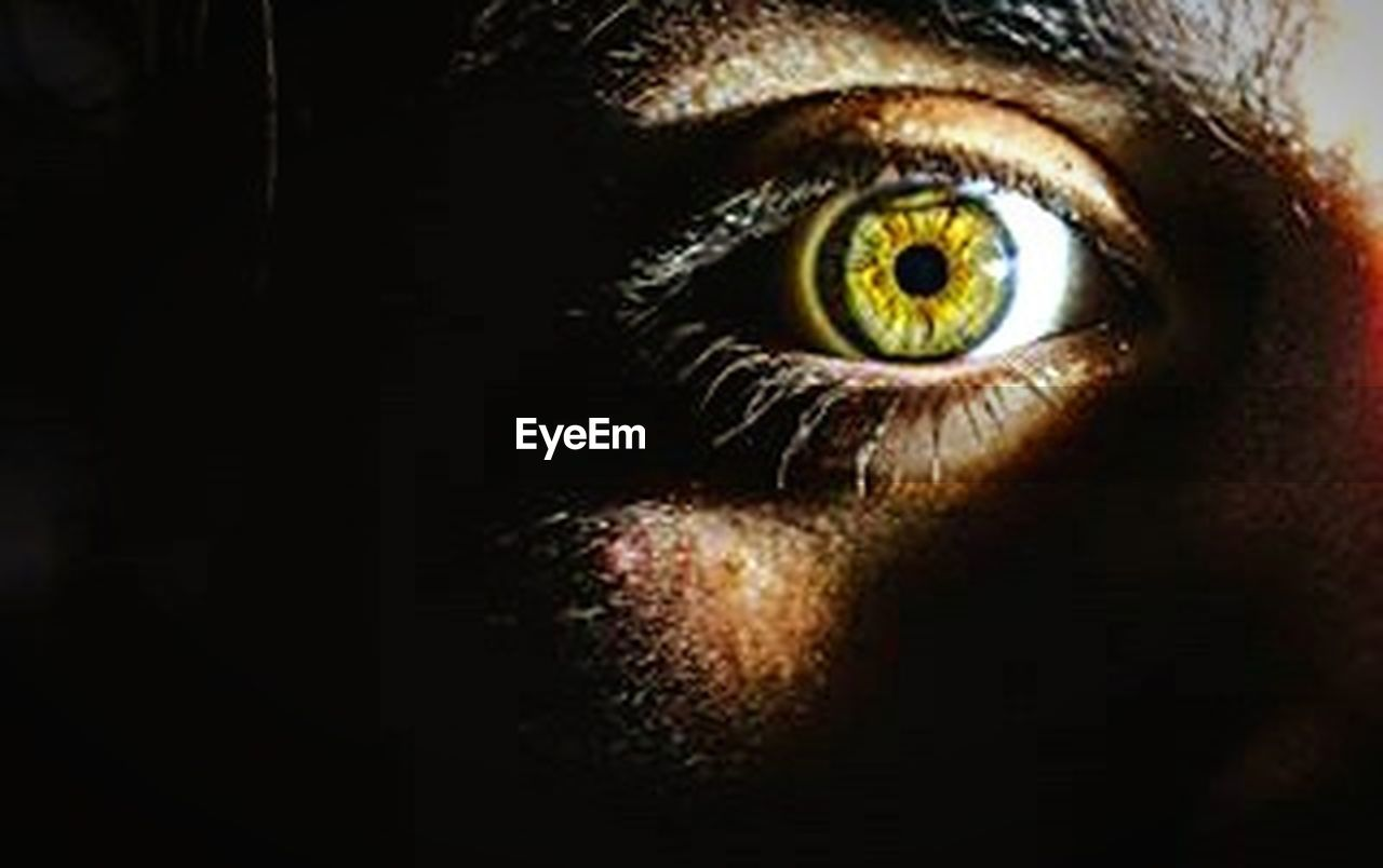 human eye, looking at camera, human body part, eyesight, eyelash, spooky, portrait, one person, eyeball, horror, adult, one woman only, iris - eye, sensory perception, adults only, people, only women, halloween, close-up, hazel eyes, one young woman only, eyebrow, young adult, day