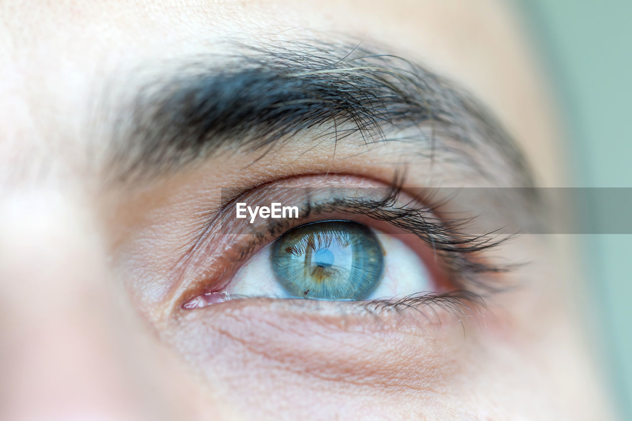 Close up on a blue eye of a man, human eye