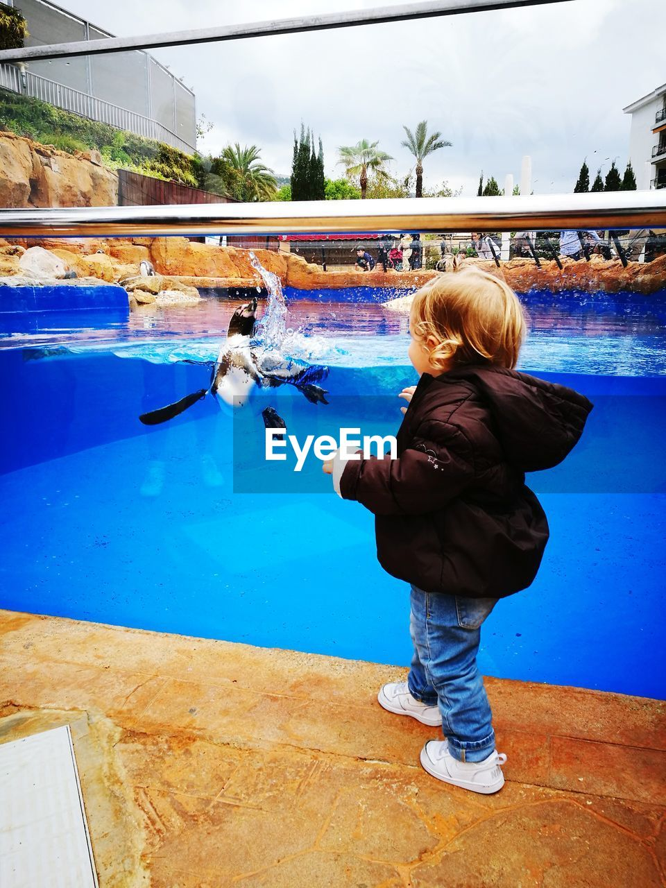 real people, child, lifestyles, full length, childhood, one person, girls, women, leisure activity, females, rear view, pool, water, swimming pool, casual clothing, day, boys, outdoors, warm clothing, innocence