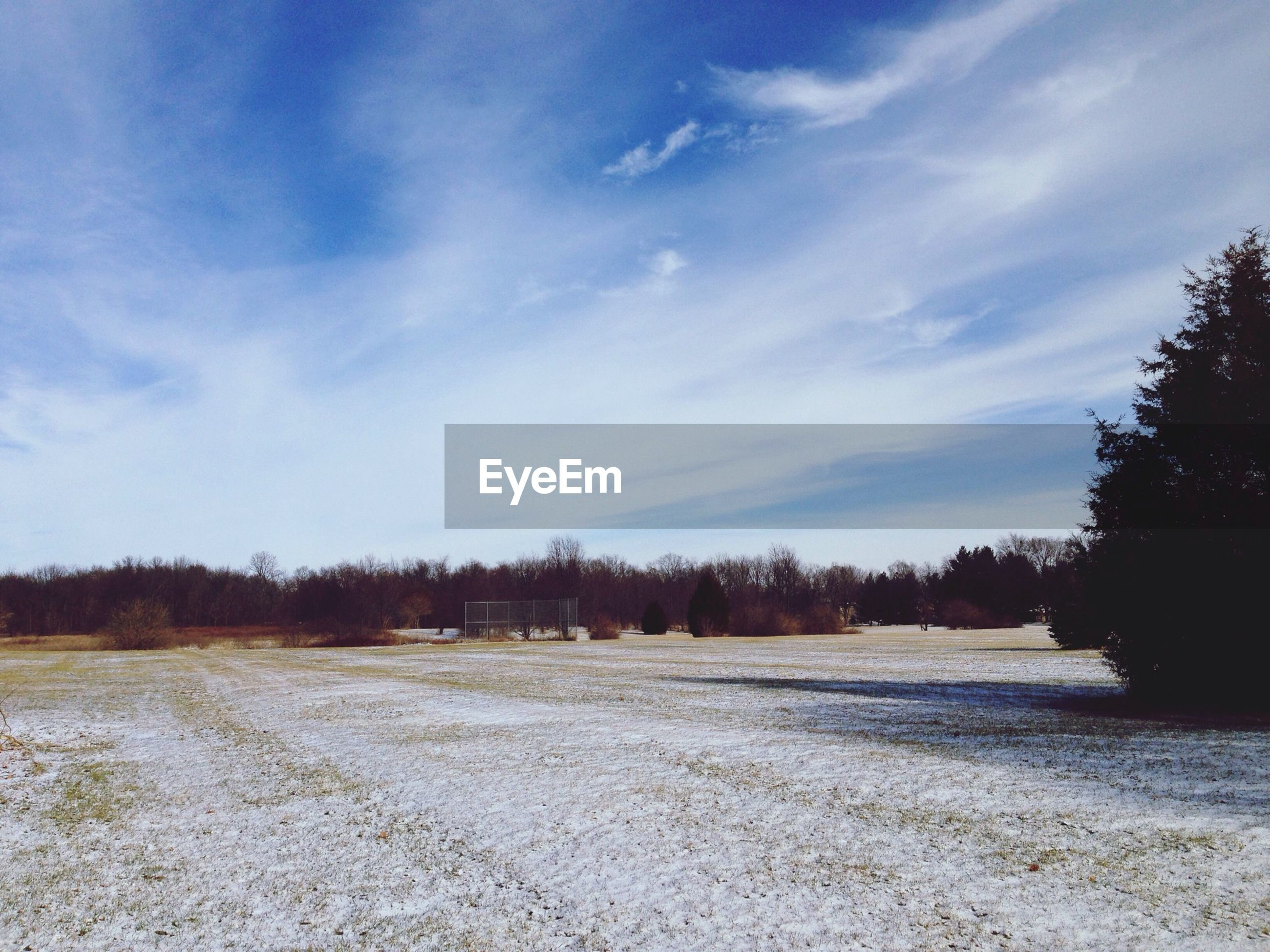 View Of Snow-Covered Field