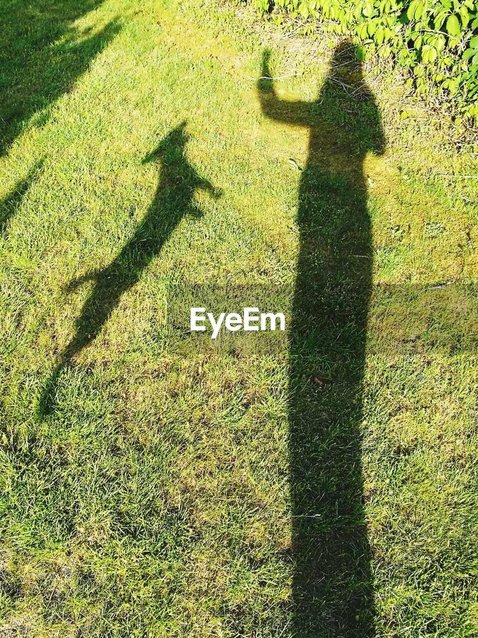 shadow, real people, focus on shadow, sunlight, long shadow - shadow, high angle view, lifestyles, green color, grass, leisure activity, field, day, two people, growth, standing, outdoors, men, togetherness, nature, people