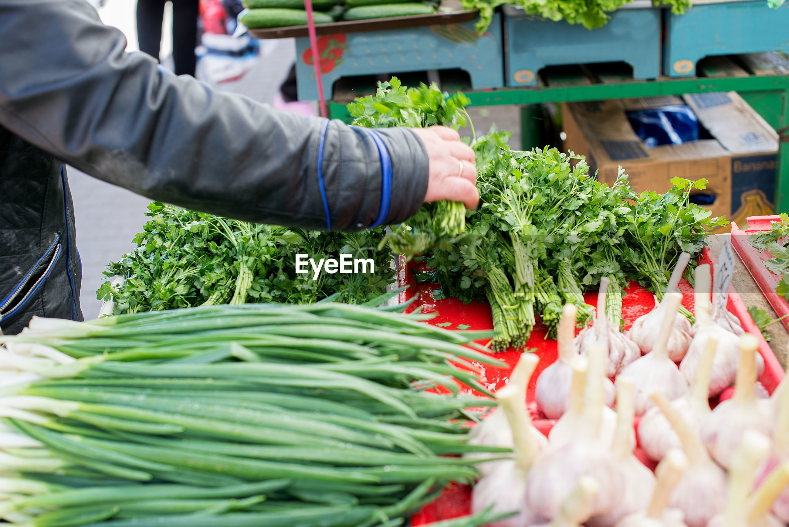 Cropped image of person buying vegetables at market