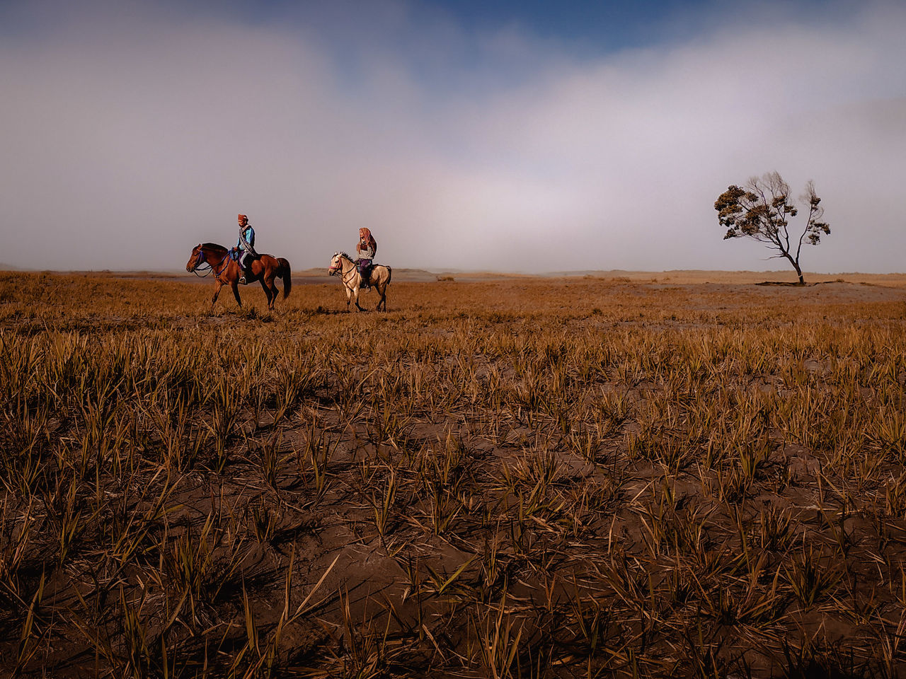 PEOPLE RIDING HORSE ON FIELD