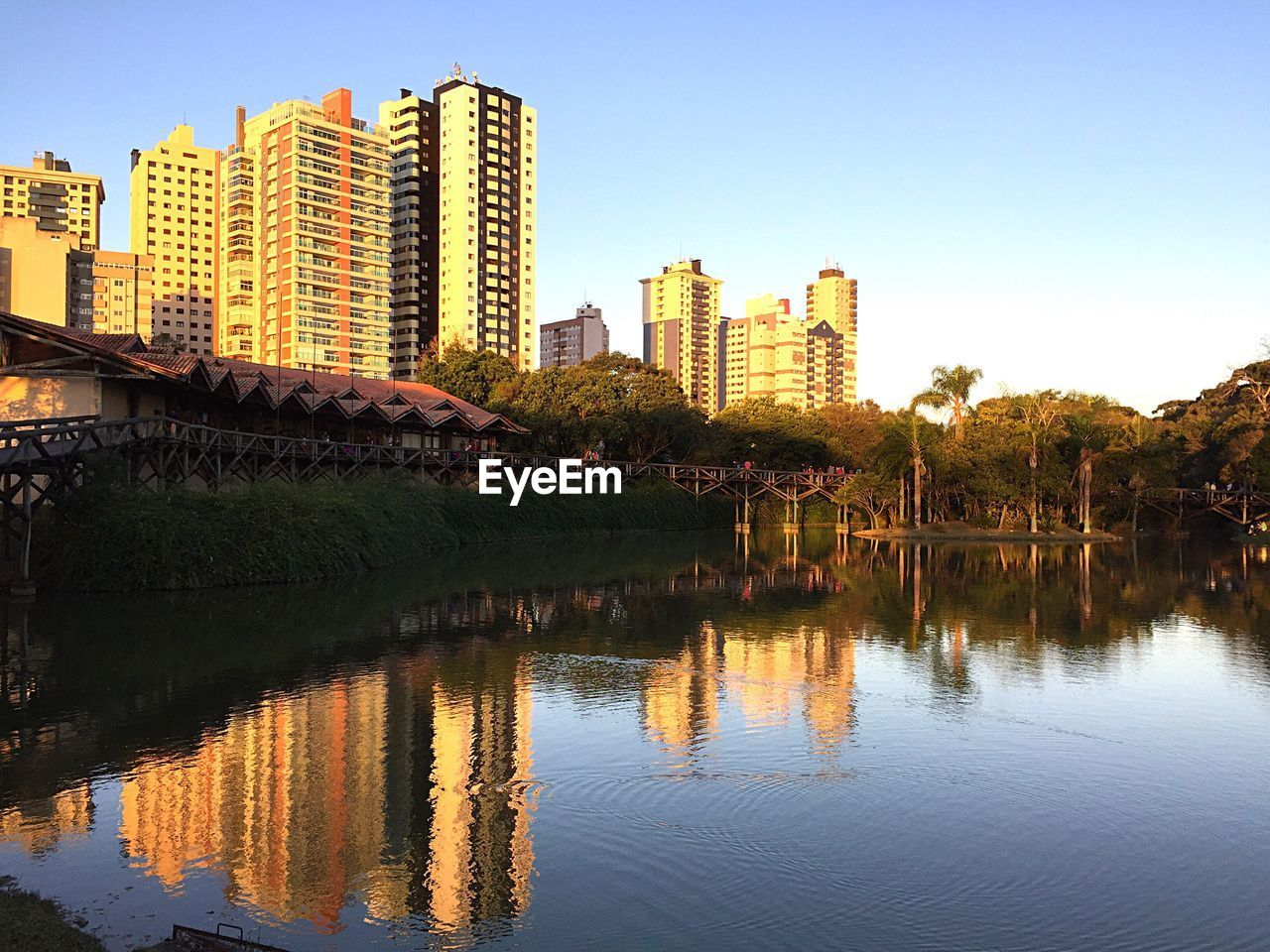 architecture, built structure, building exterior, reflection, skyscraper, water, waterfront, tree, outdoors, river, clear sky, city, no people, growth, day, sky, nature, modern, beauty in nature, cityscape