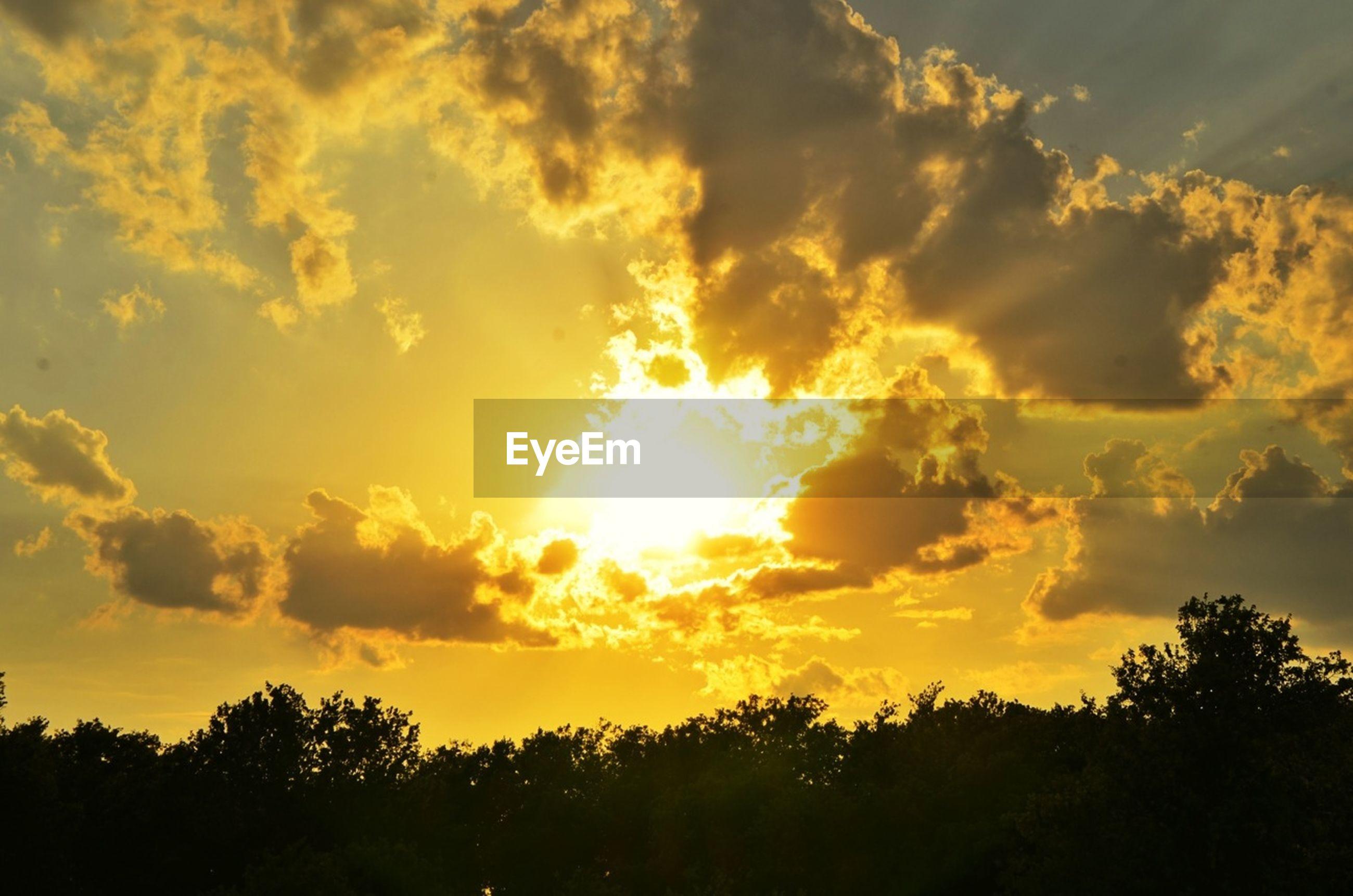 sunset, silhouette, beauty in nature, scenics, tranquil scene, sky, tranquility, tree, sun, nature, cloud - sky, idyllic, orange color, sunlight, sunbeam, cloud, low angle view, dramatic sky, back lit, majestic