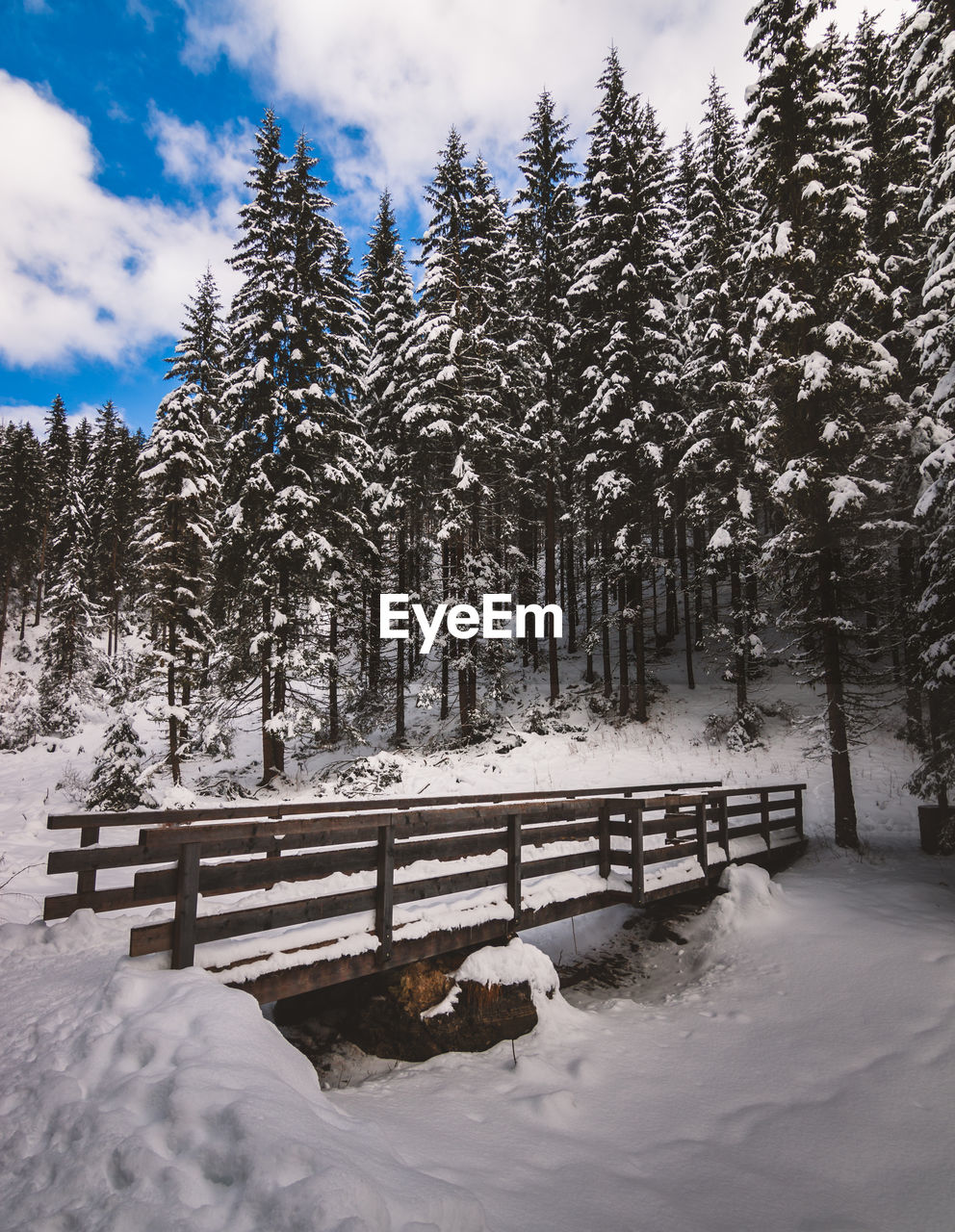 snow, winter, cold temperature, weather, nature, tranquility, cold, tranquil scene, beauty in nature, tree, frozen, scenics, white color, outdoors, landscape, day, no people, cloud - sky, sky