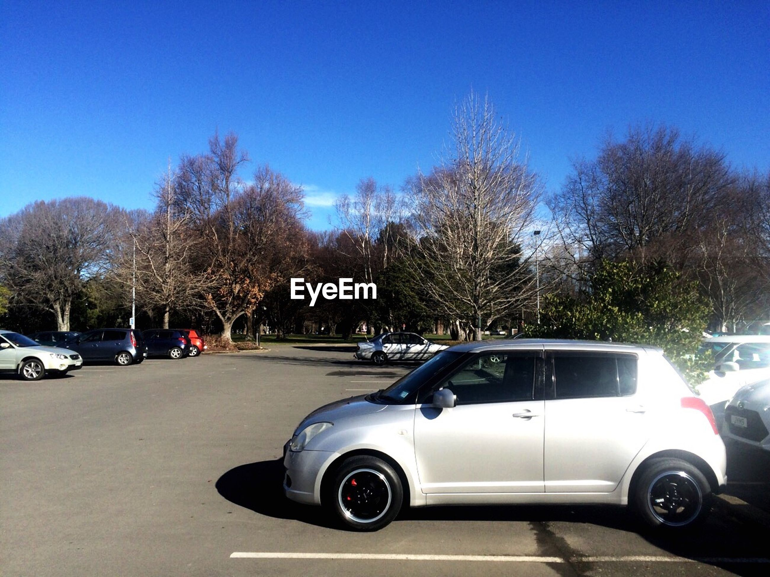 transportation, land vehicle, mode of transport, tree, blue, stationary, road, parking, parked, bare tree, sky, day, outdoors, parking lot, no people, part of, nature, growth