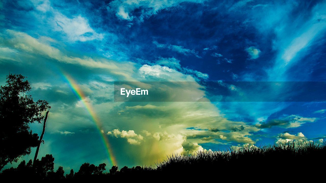 Rainbow on sky over silhouette trees