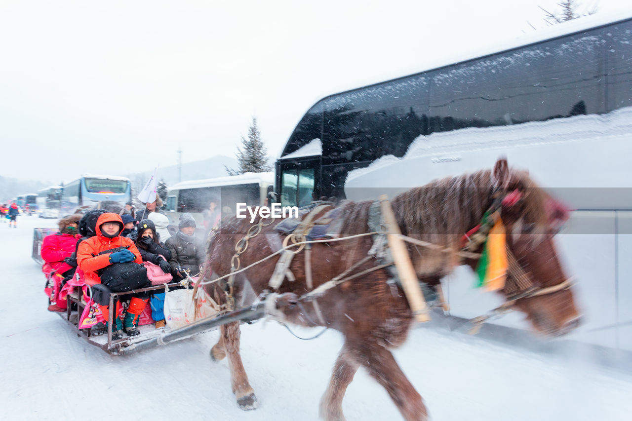 HORSE CART IN SNOW DURING WINTER SEASON