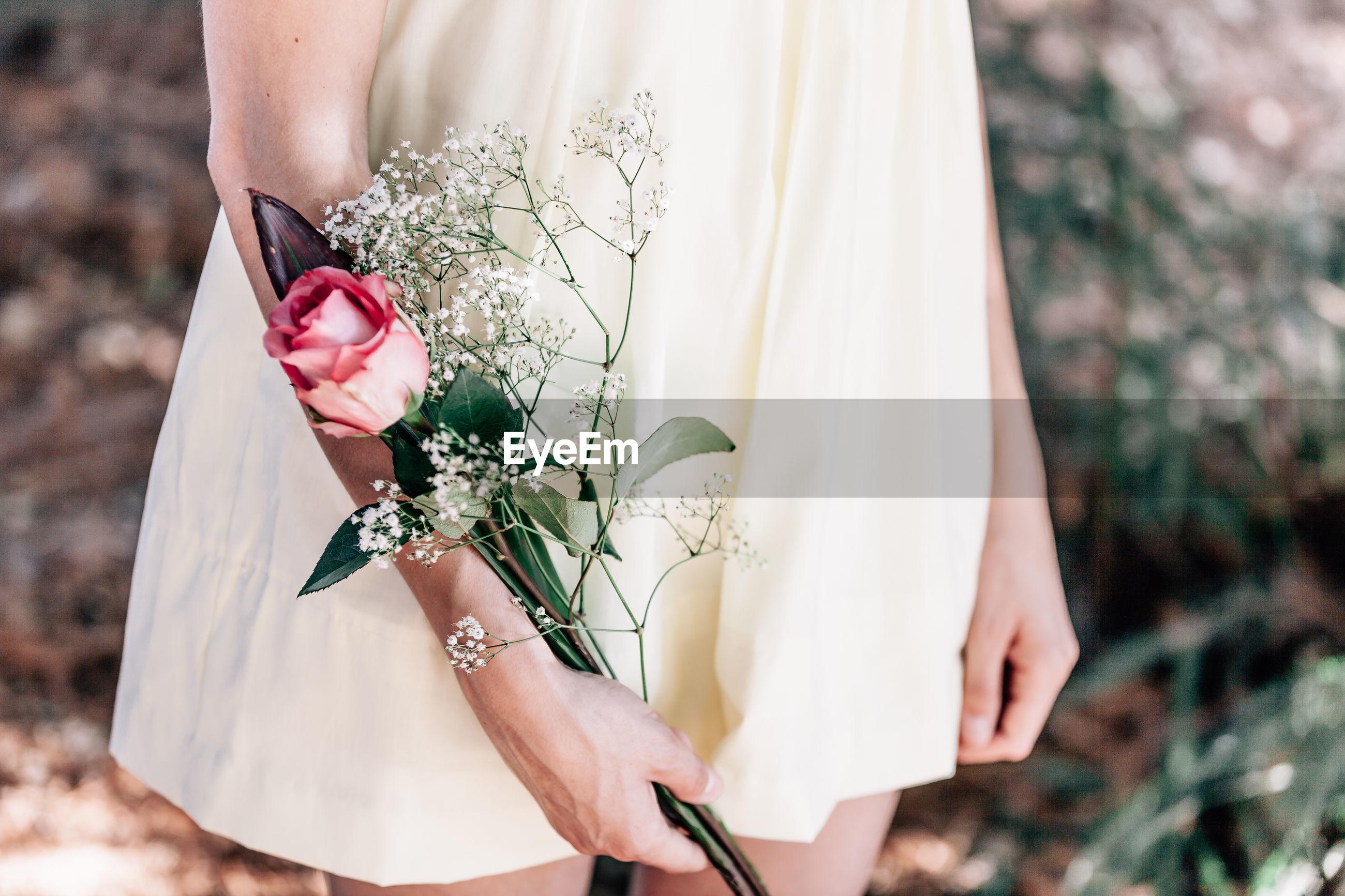 Hand holding rose