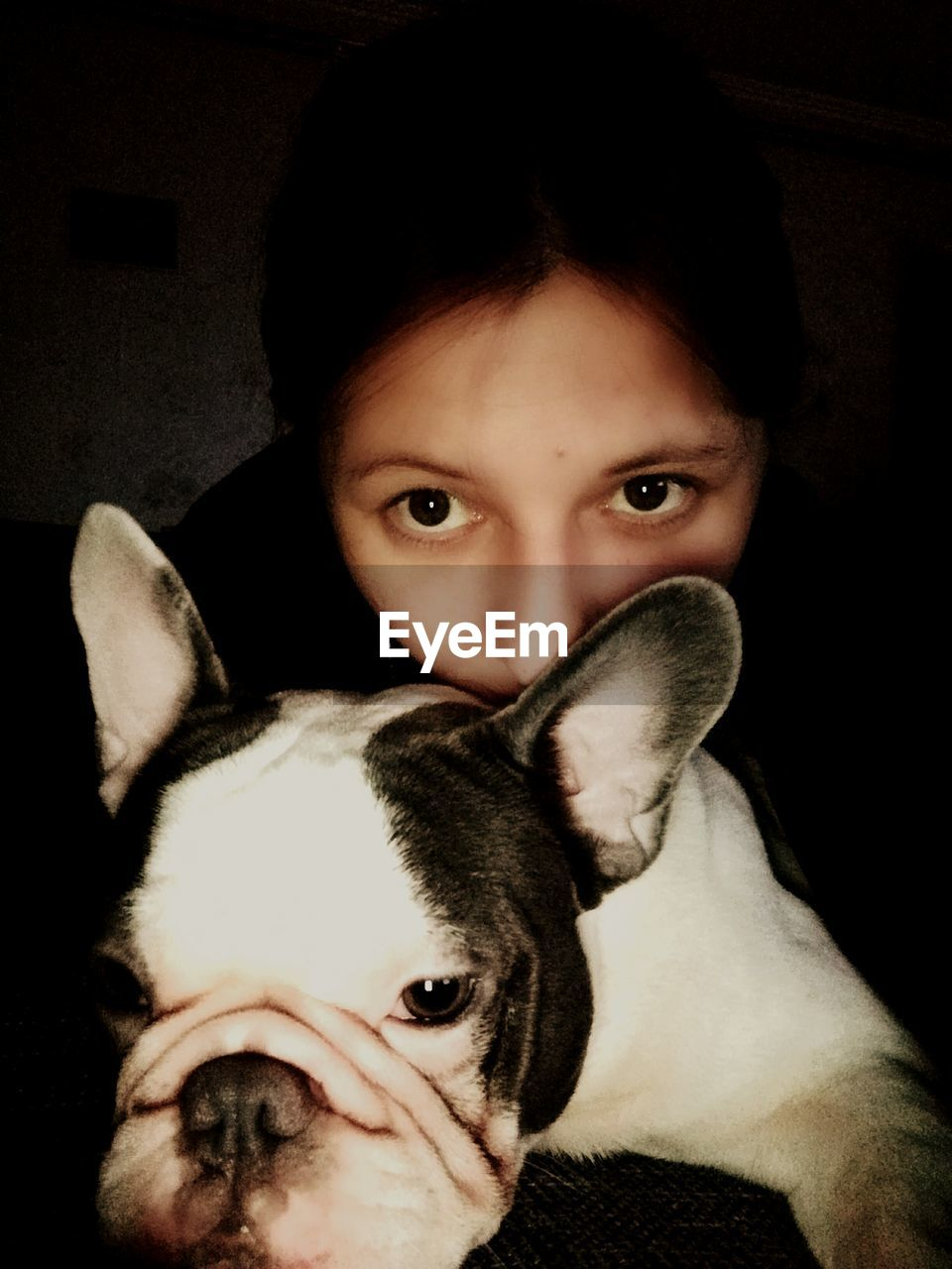 pets, looking at camera, domestic animals, animal themes, dog, one animal, portrait, mammal, indoors, one person, real people, boston terrier, puppy, close-up, young women, young adult, day