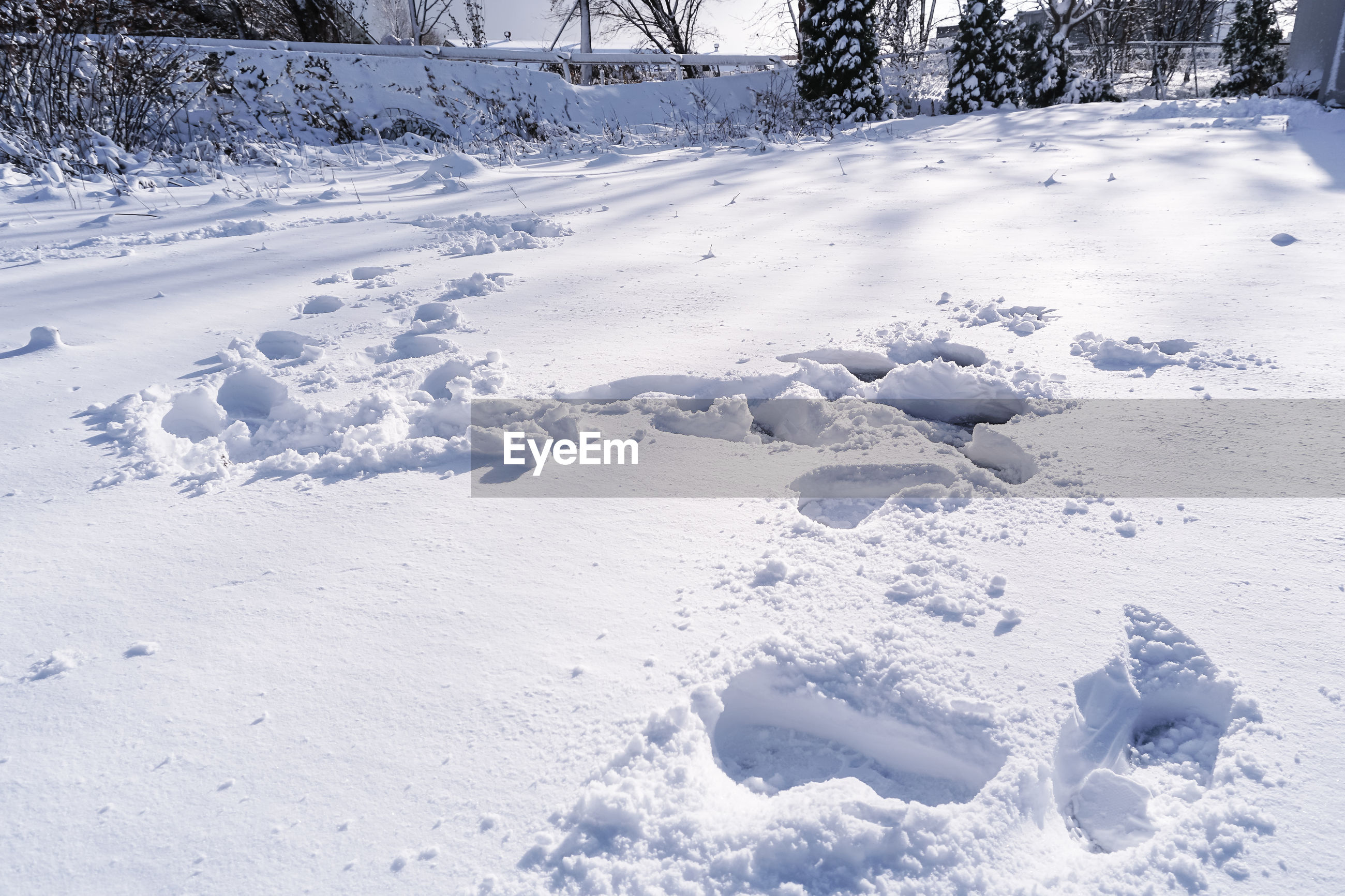 VIEW OF SNOW COVERED FIELD