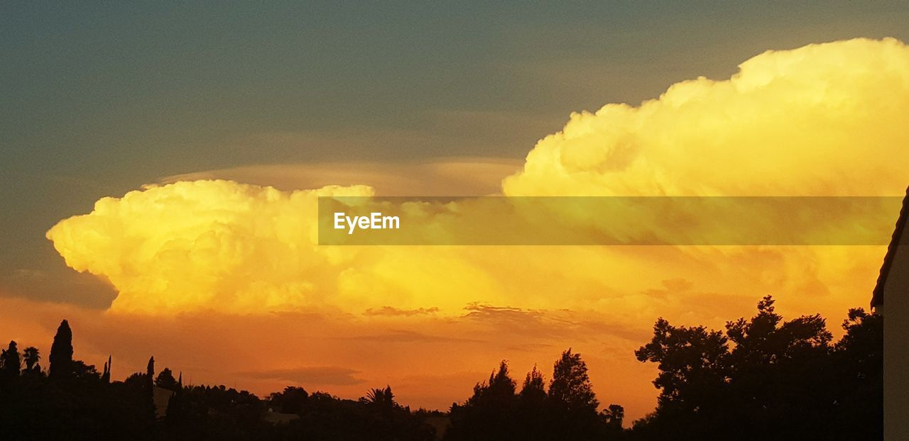 sunset, sky, cloud - sky, tree, beauty in nature, scenics - nature, silhouette, orange color, plant, tranquility, tranquil scene, nature, no people, non-urban scene, idyllic, outdoors, dramatic sky, low angle view, environment, yellow