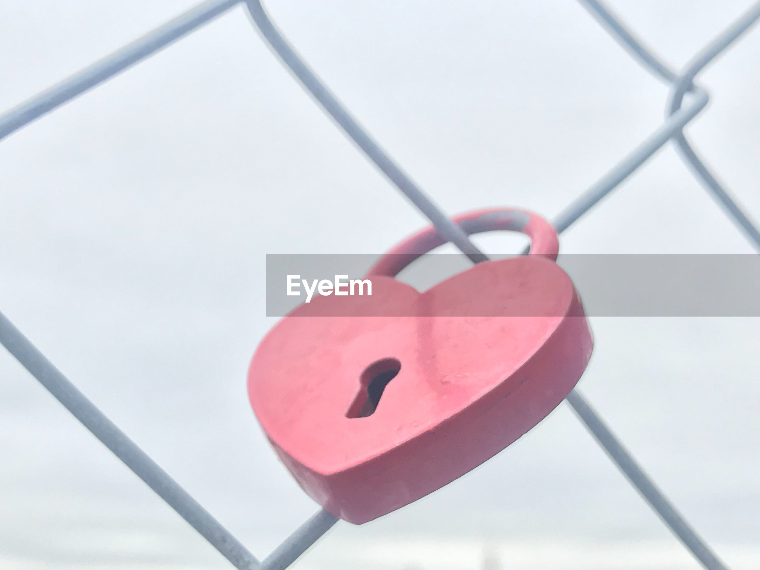 Close-up of love padlock hanging on chainlink fence