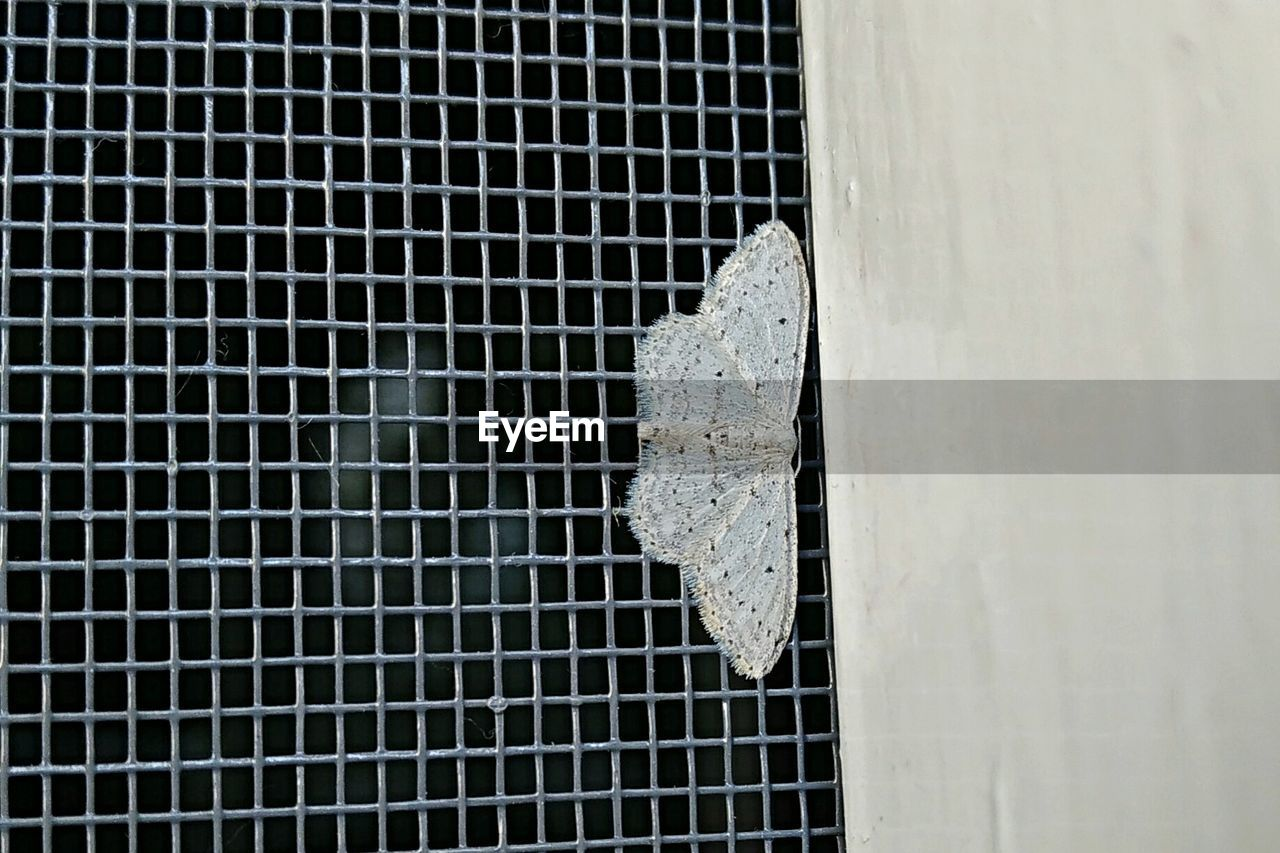 metal, close-up, safety, rusty, day, no people, indoors, metal grate