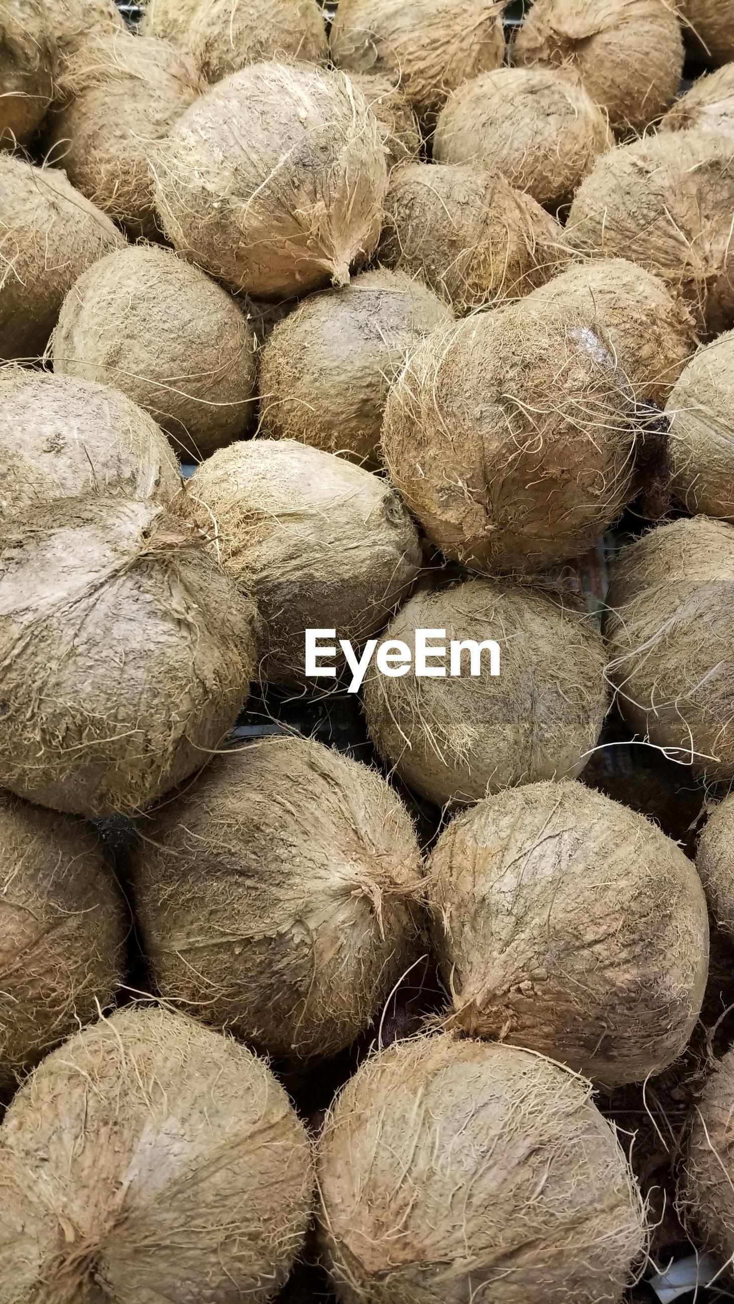 Full frame shot of coconuts for sale at market