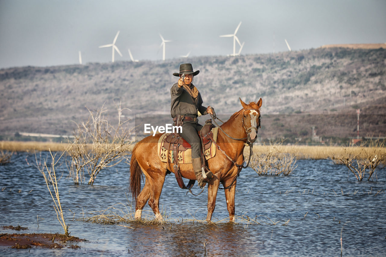 animal themes, mammal, animal, domestic, water, domestic animals, pets, nature, vertebrate, animal wildlife, real people, one animal, one person, livestock, day, horse, horseback riding, beauty in nature, riding