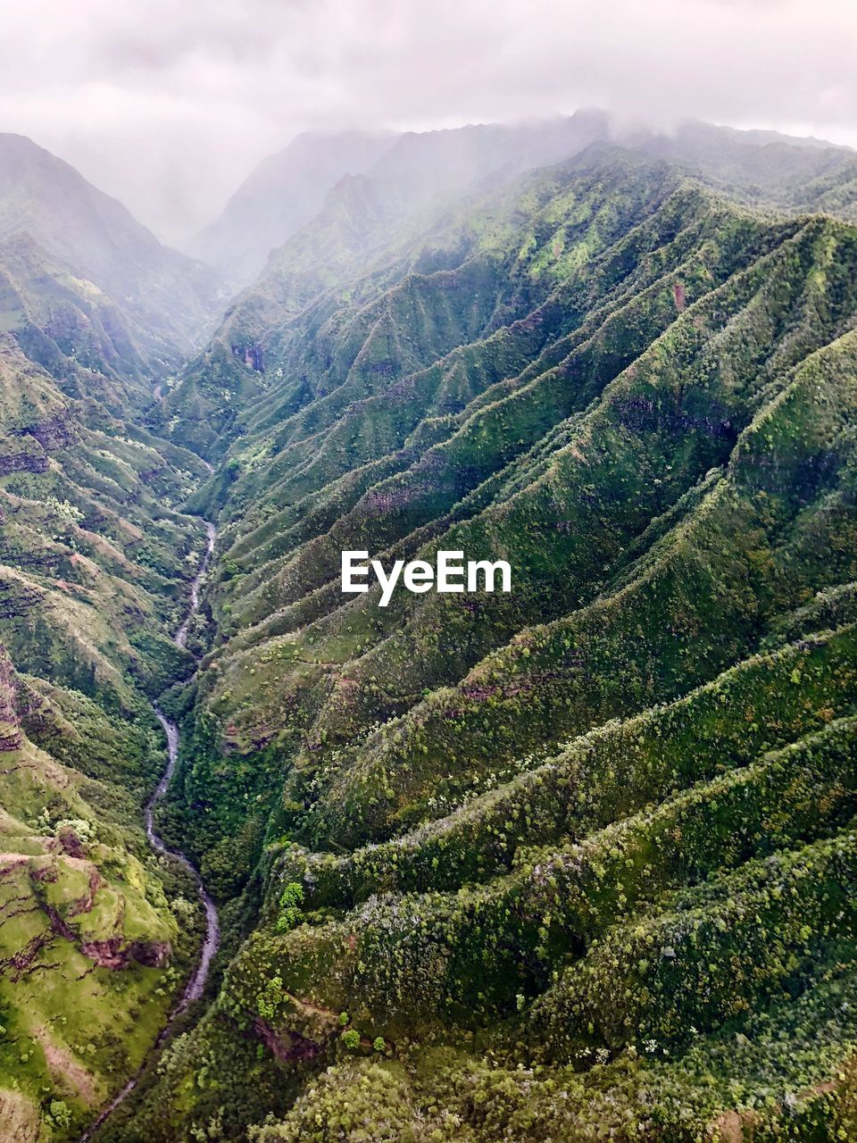 mountain, beauty in nature, scenics, tranquil scene, nature, tranquility, landscape, mountain range, green color, high angle view, no people, day, sky, outdoors, tea crop, plant, agriculture, cloud - sky, growth, tree, terraced field