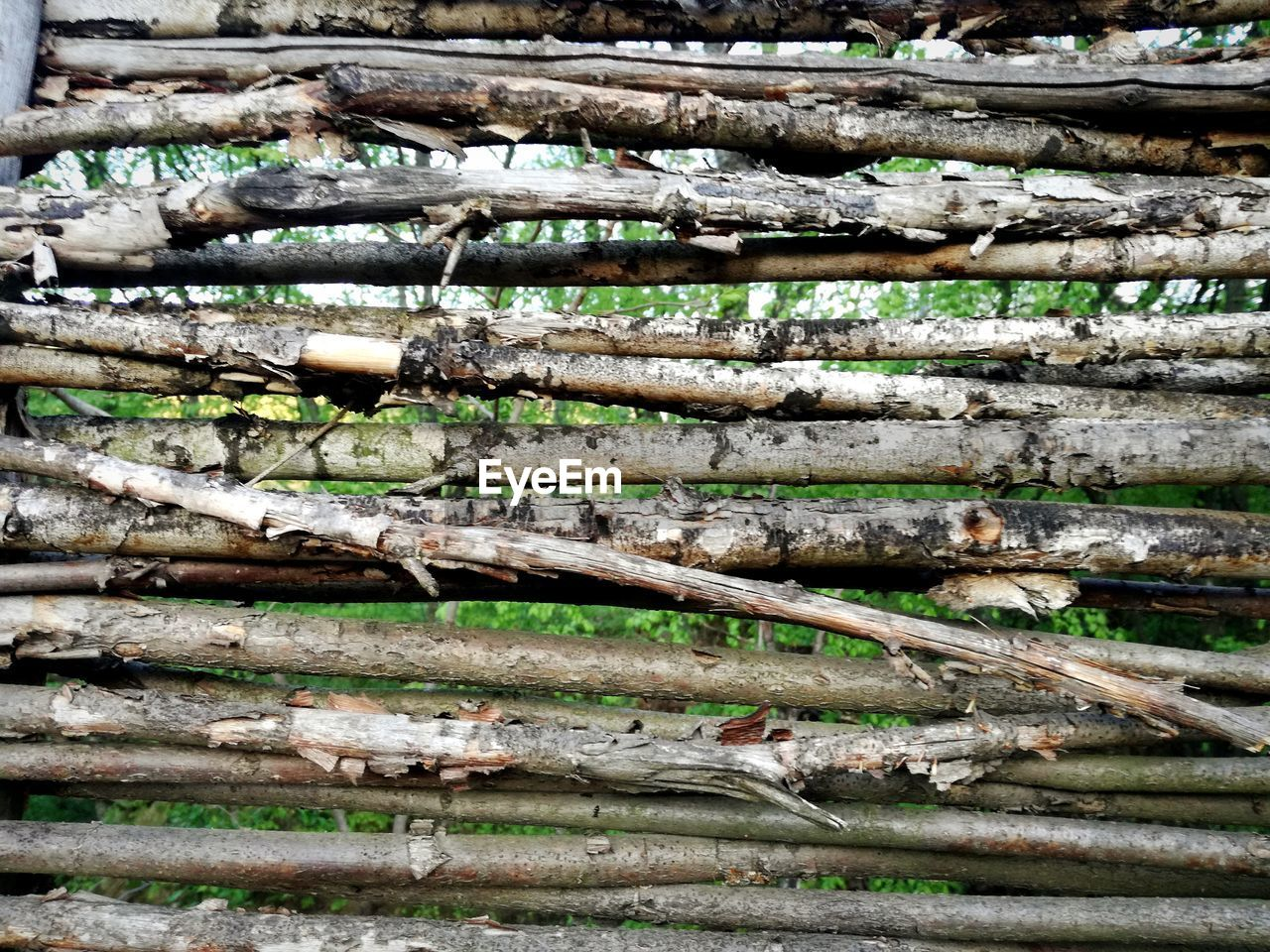 log, day, no people, wood - material, timber, forest, wood, stack, firewood, tree, large group of objects, lumber industry, nature, deforestation, plant, abundance, land, outdoors, close-up, heap, woodpile