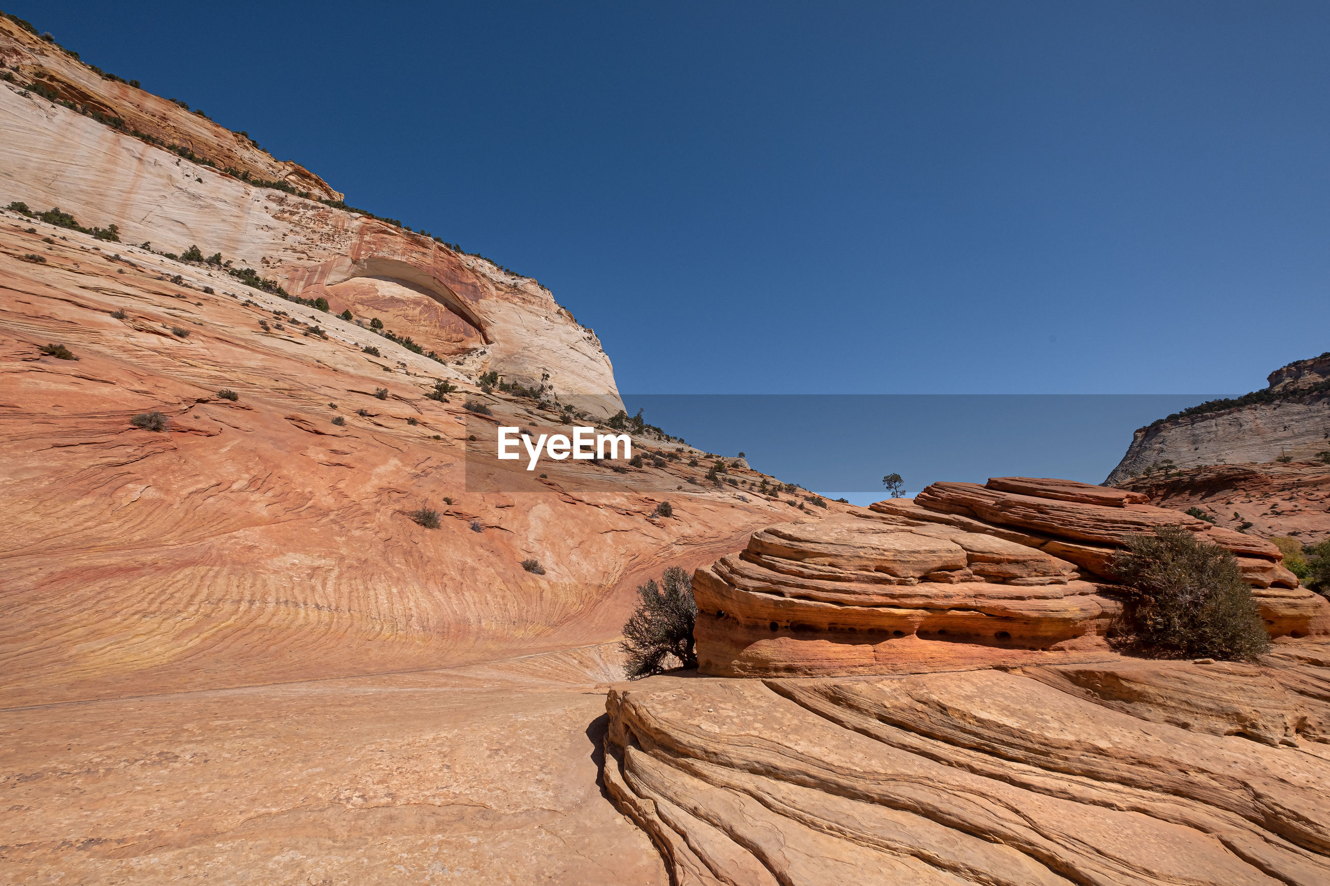 Red rock formation in zion national park utah, usa