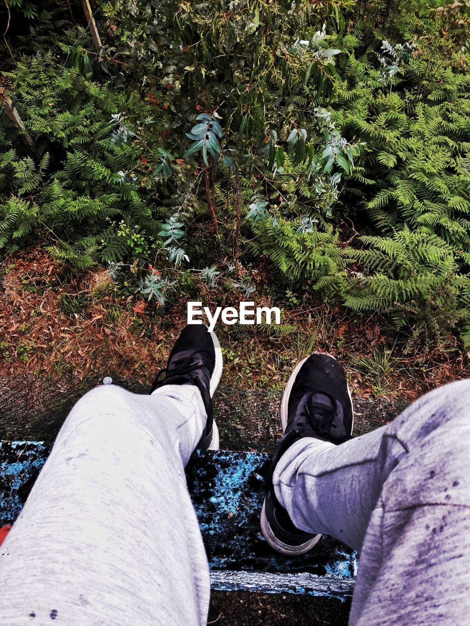 shoe, human leg, low section, personal perspective, two people, high angle view, real people, human body part, standing, men, day, canvas shoe, outdoors, friendship, nature, people