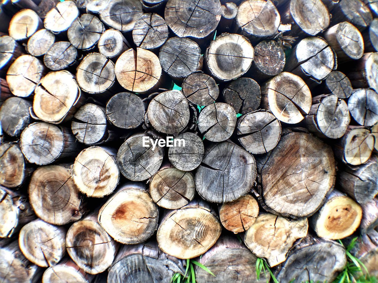 log, timber, woodpile, stack, forestry industry, backgrounds, full frame, wood - material, abundance, large group of objects, close-up, heap, no people, textured, day, outdoors