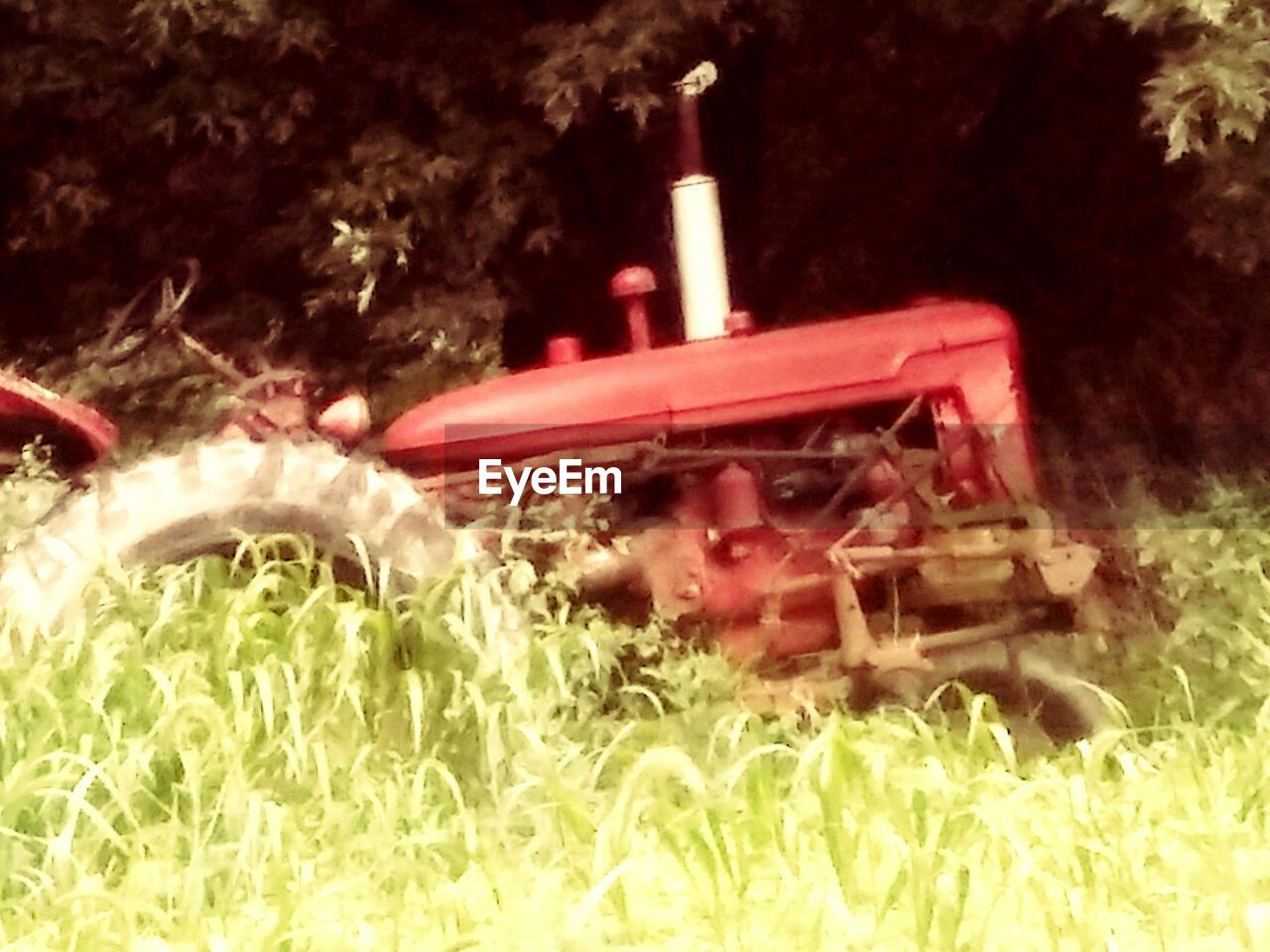 grass, no people, field, plant, machinery, close-up, nature, outdoors, day, combine harvester