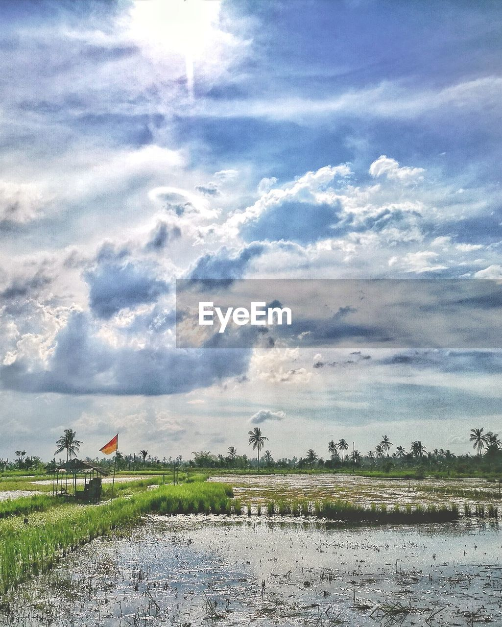 sky, cloud - sky, no people, day, nature, outdoors, field, beauty in nature, tranquility, agriculture, water, landscape, scenics
