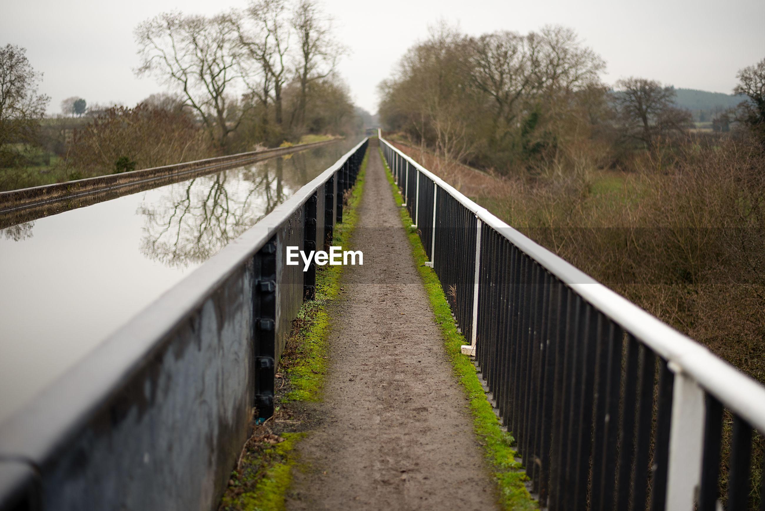 View of bridge along trees