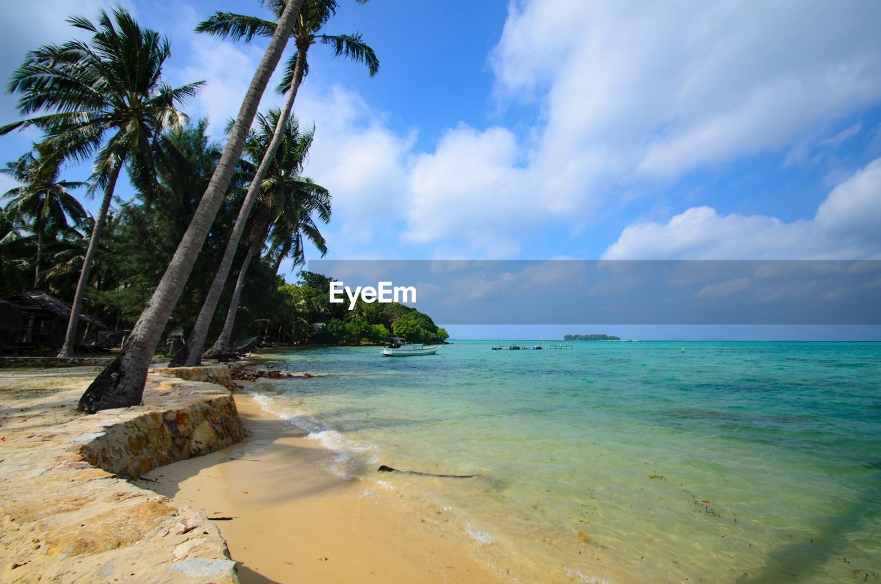 sea, sky, nature, scenics, beach, beauty in nature, cloud - sky, tree, tranquility, tranquil scene, sand, horizon over water, palm tree, water, day, no people, outdoors