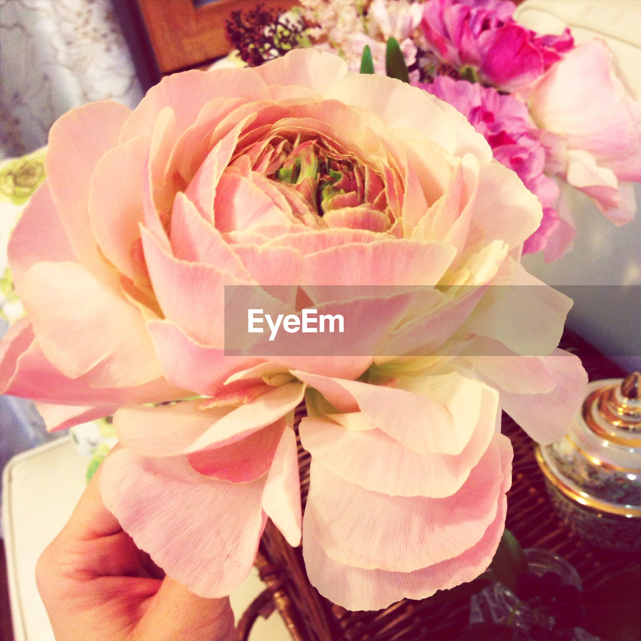 flower, indoors, freshness, petal, rose - flower, vase, table, fragility, close-up, flower head, pink color, decoration, bouquet, high angle view, flower arrangement, home interior, rose, still life, focus on foreground, glass - material