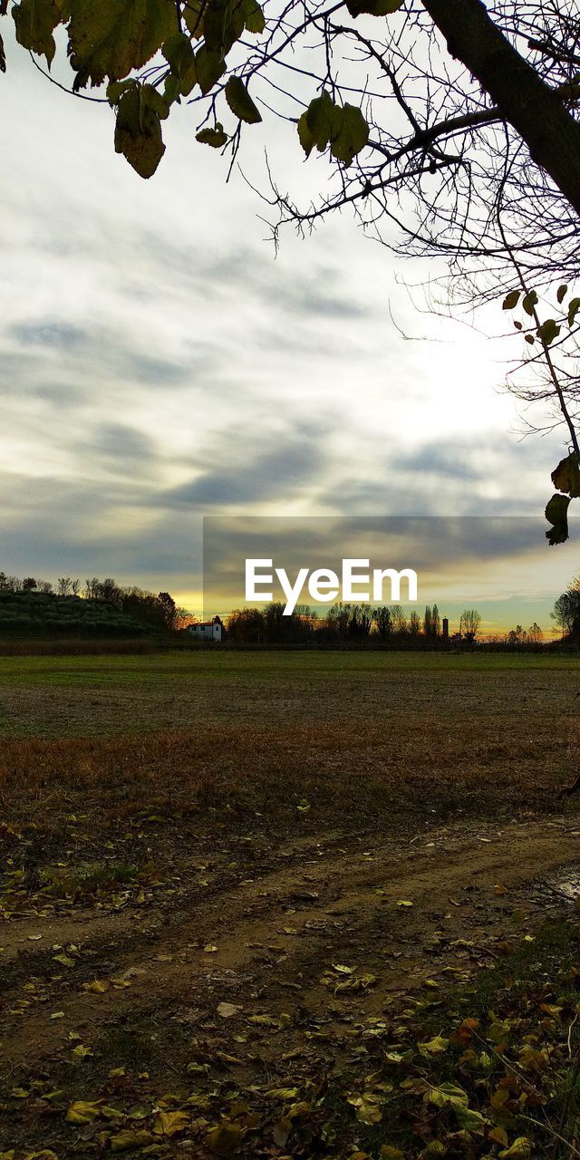 sky, plant, tree, field, land, cloud - sky, landscape, environment, scenics - nature, nature, beauty in nature, no people, tranquil scene, tranquility, agriculture, mode of transportation, growth, day, non-urban scene, outdoors