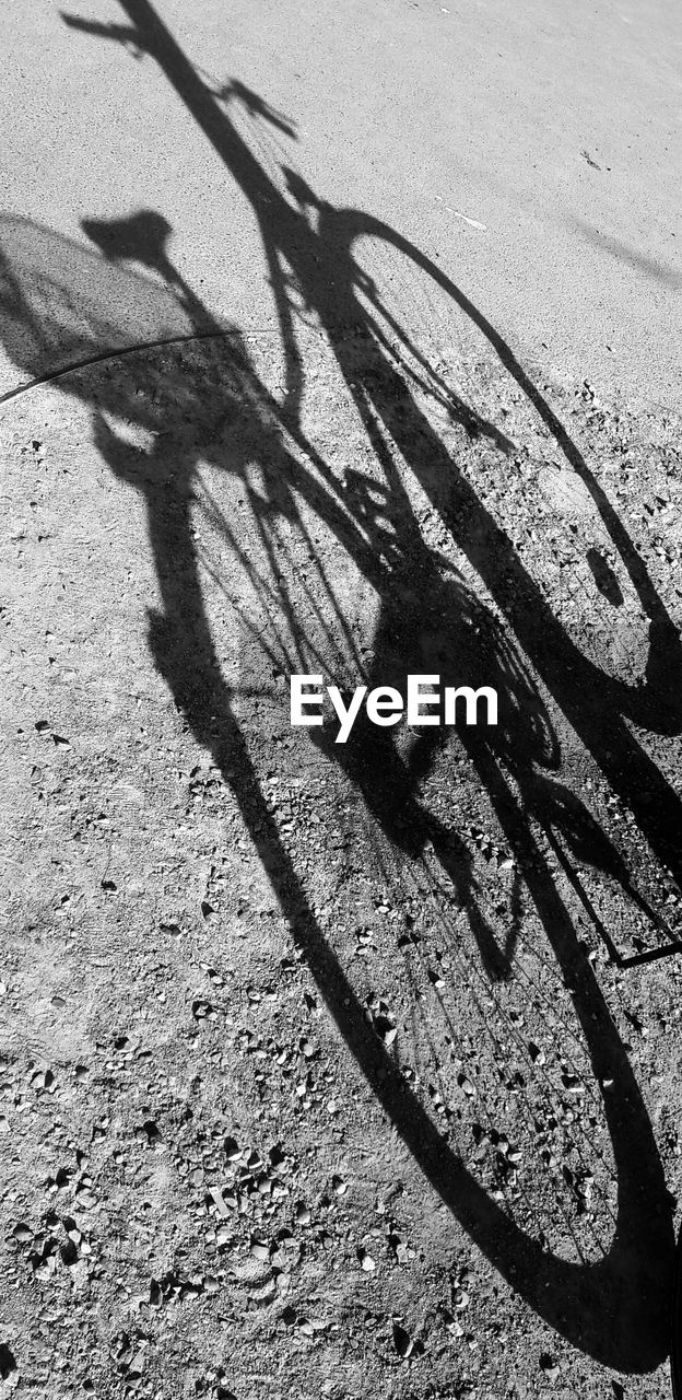 shadow, sunlight, day, focus on shadow, outdoors, bicycle, high angle view, transportation, no people, bicycle rack, nature