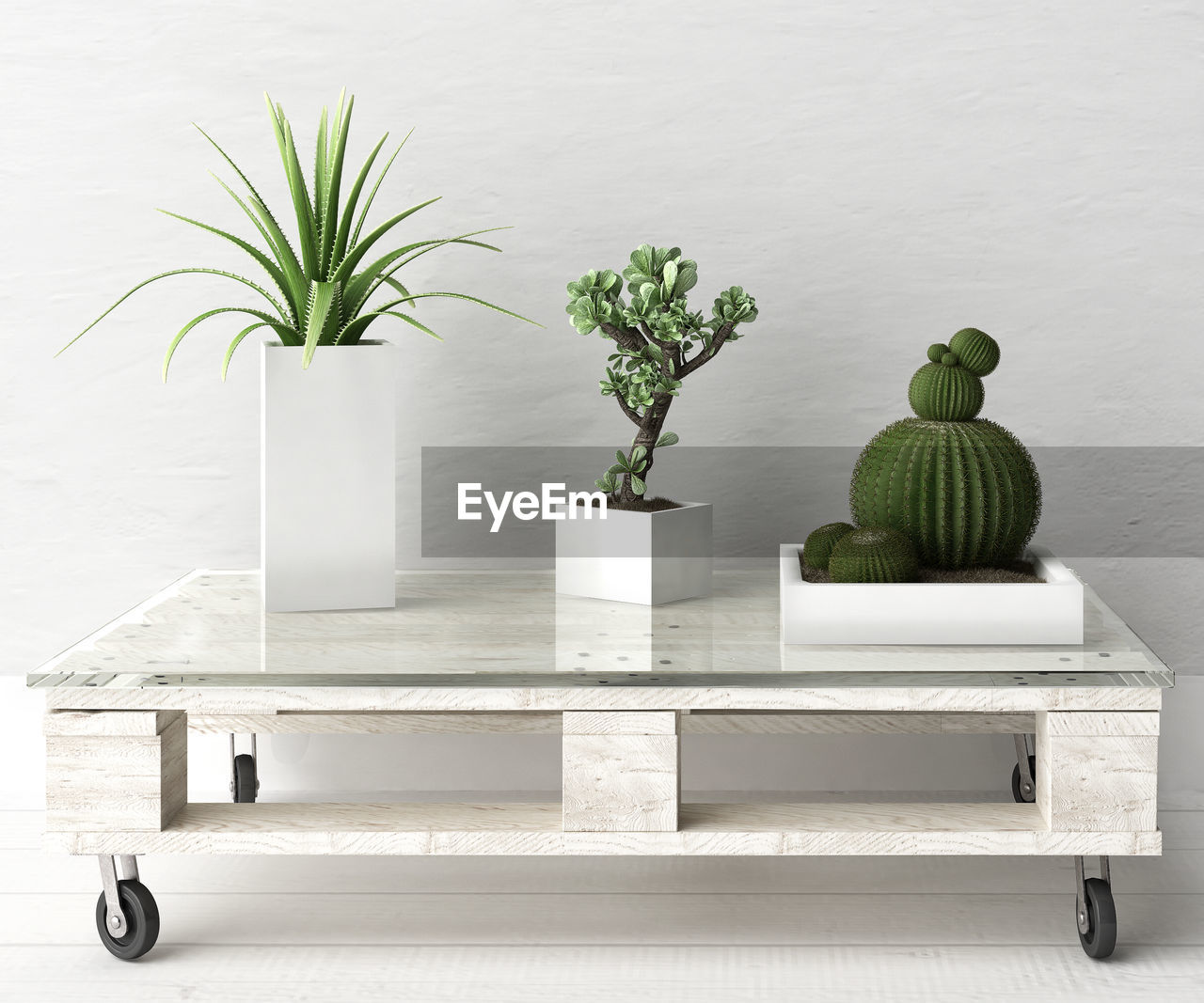 growth, potted plant, plant, green color, white color, leaf, no people, table, nature, indoors, day, beauty in nature, freshness, close-up