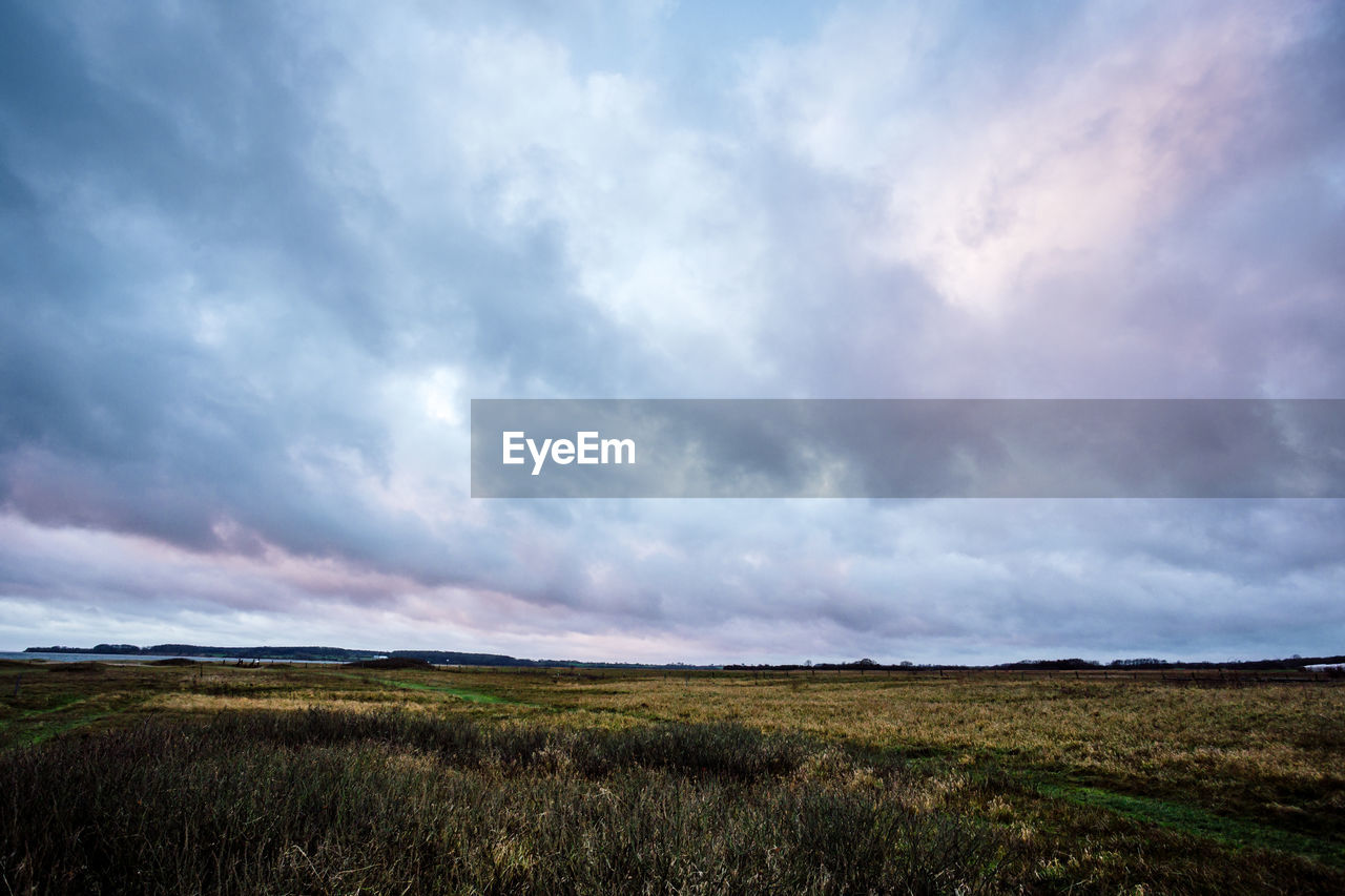 cloud - sky, sky, environment, tranquility, tranquil scene, beauty in nature, scenics - nature, landscape, land, nature, no people, non-urban scene, day, grass, plant, field, overcast, outdoors, green color
