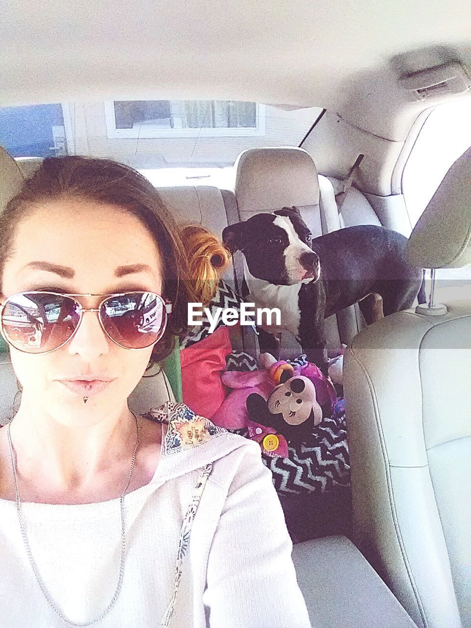 vehicle interior, car interior, eyeglasses, looking at camera, car, one person, real people, dog, young women, young adult, transportation, pets, animal themes, portrait, indoors, one animal, domestic animals, day, mammal, vehicle seat, close-up, people