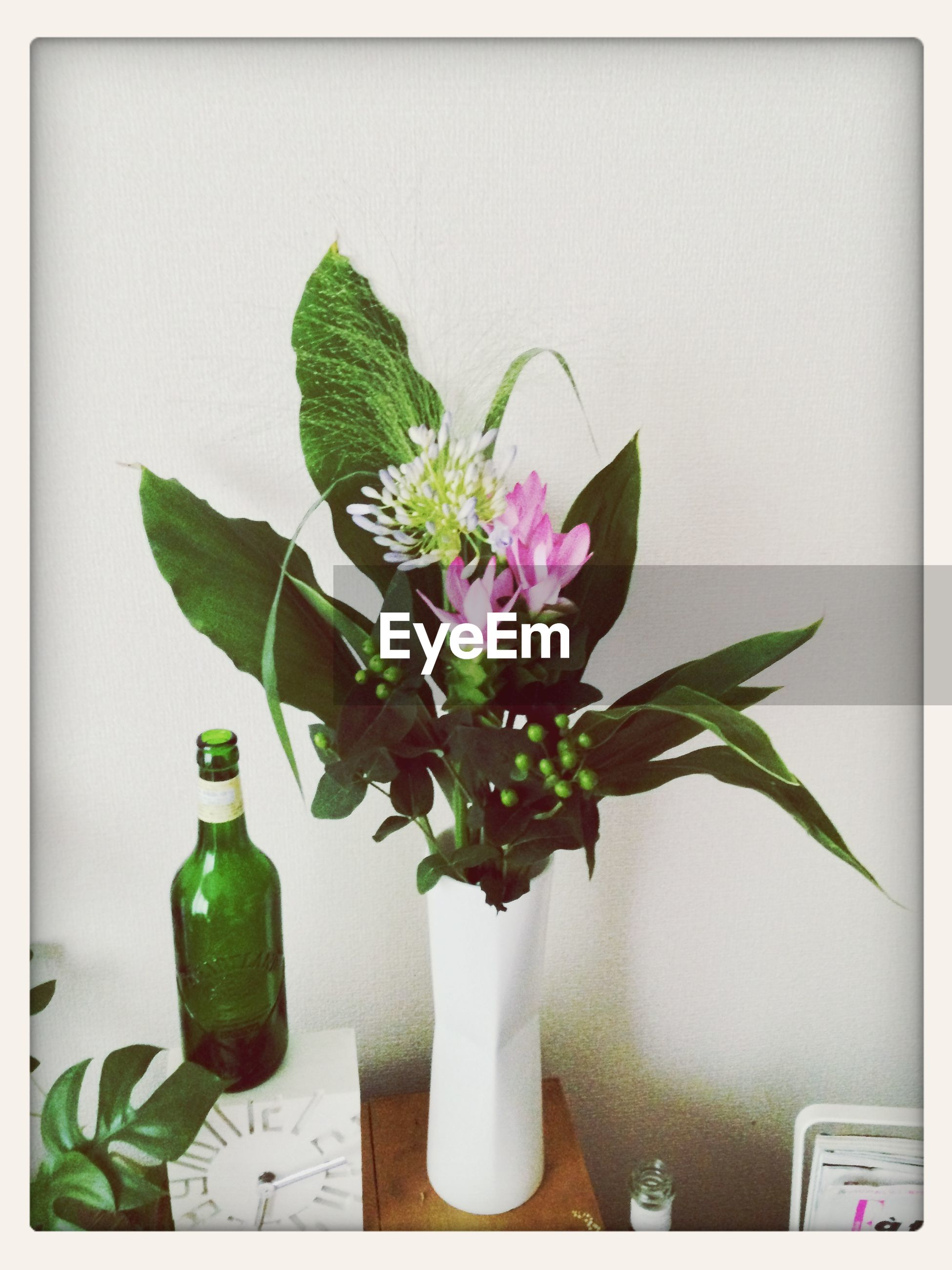 flower, vase, freshness, potted plant, fragility, growth, indoors, leaf, plant, petal, flower head, wall - building feature, flower pot, table, stem, flower arrangement, nature, beauty in nature, close-up, green color