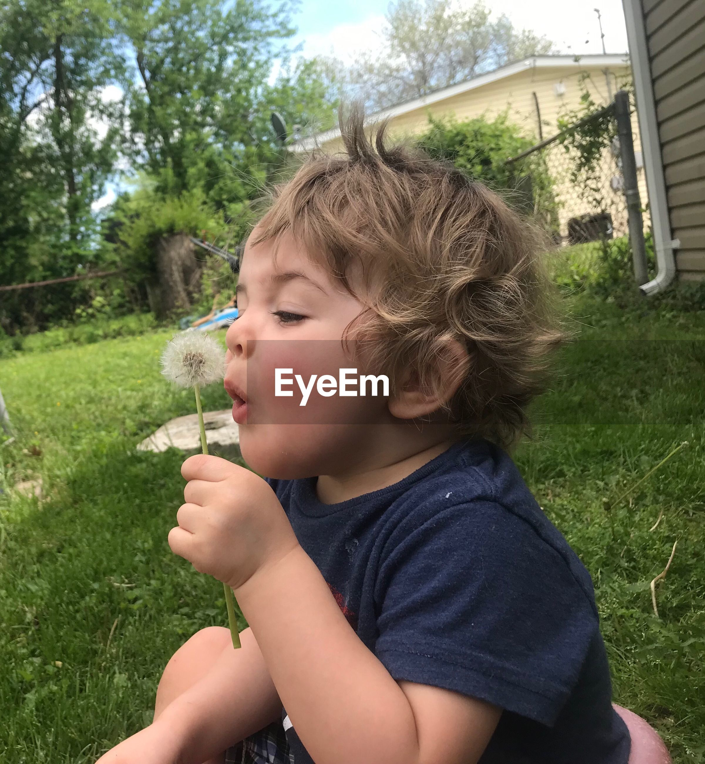 Boy blowing dandelion in yard