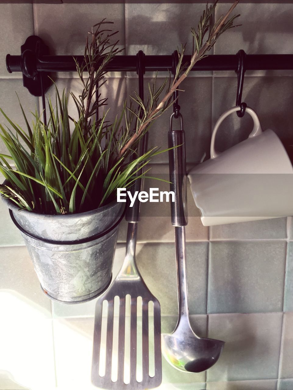 Potted Plant And Utensils On Rod Against Wall In Kitchen At Home