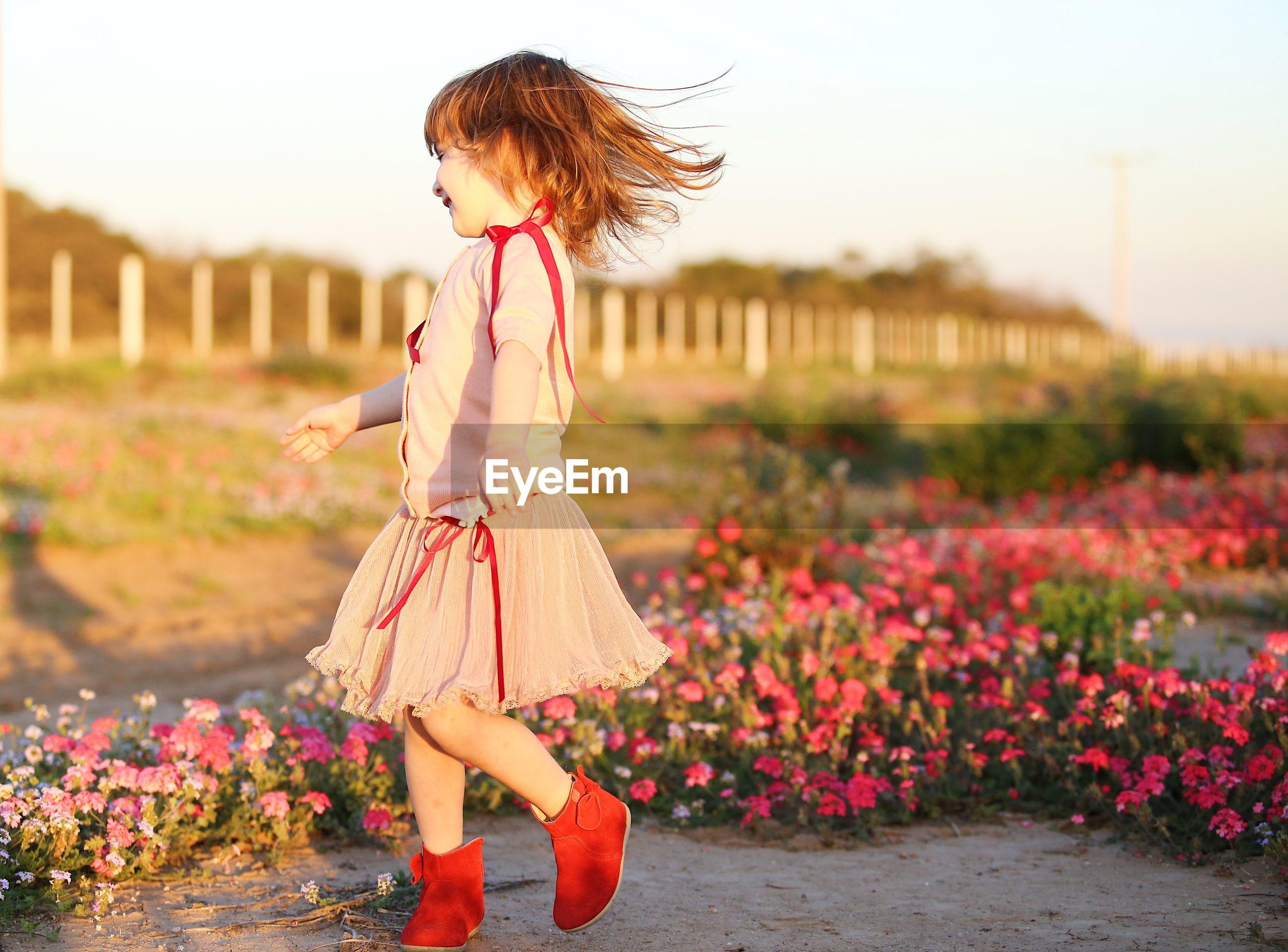 Full length of girl by flowers on land
