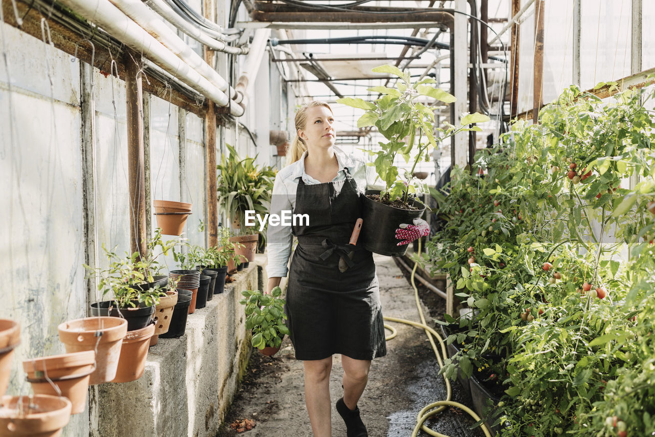 one person, plant, adult, women, young adult, standing, holding, three quarter length, lifestyles, real people, casual clothing, growth, blond hair, day, young women, potted plant, hair, front view, wireless technology, outdoors, hairstyle, glass, beautiful woman
