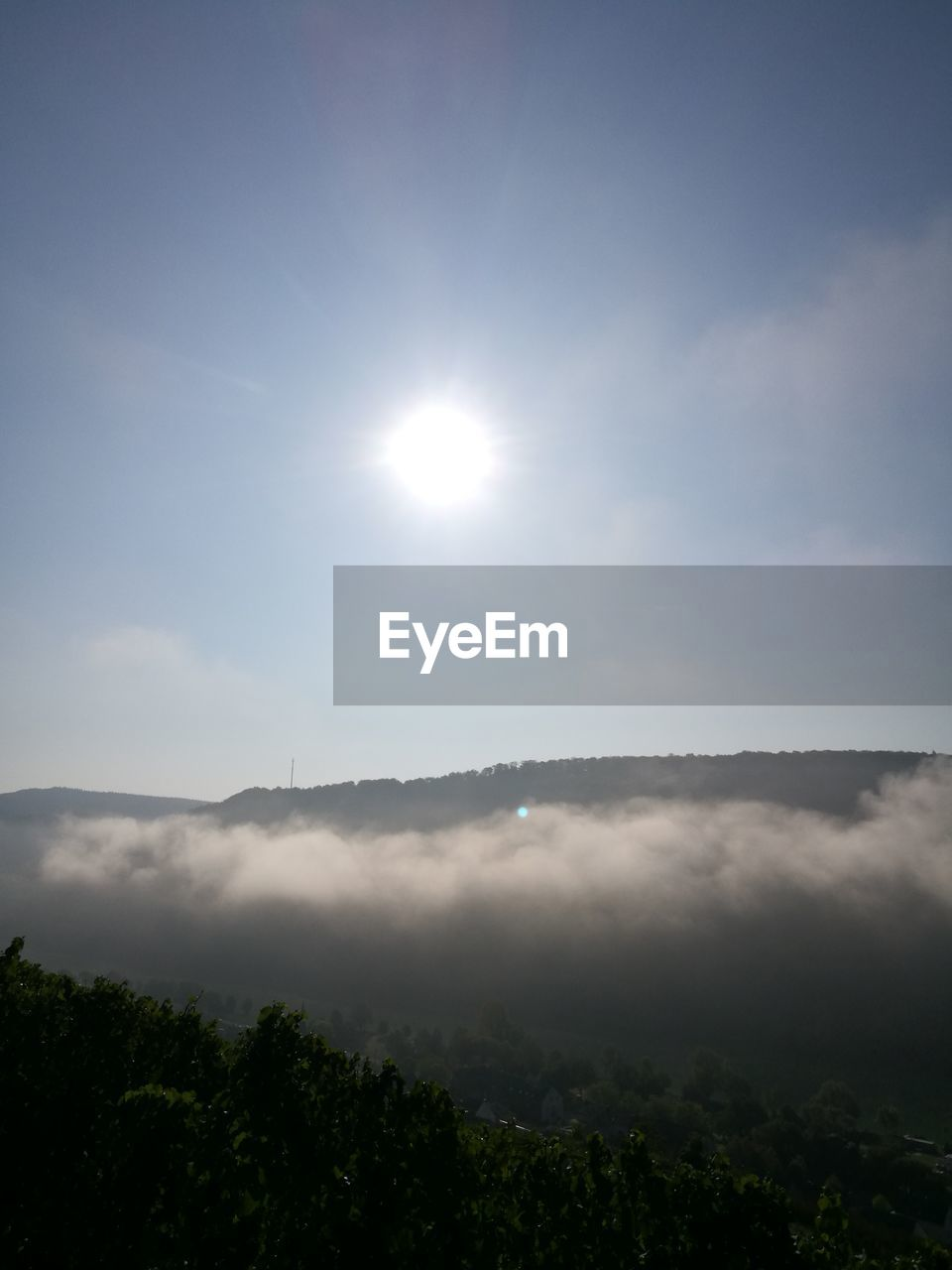 sky, beauty in nature, scenics - nature, sun, tranquil scene, tranquility, tree, plant, nature, cloud - sky, sunlight, no people, day, idyllic, outdoors, environment, non-urban scene, growth, mountain, sunbeam, bright